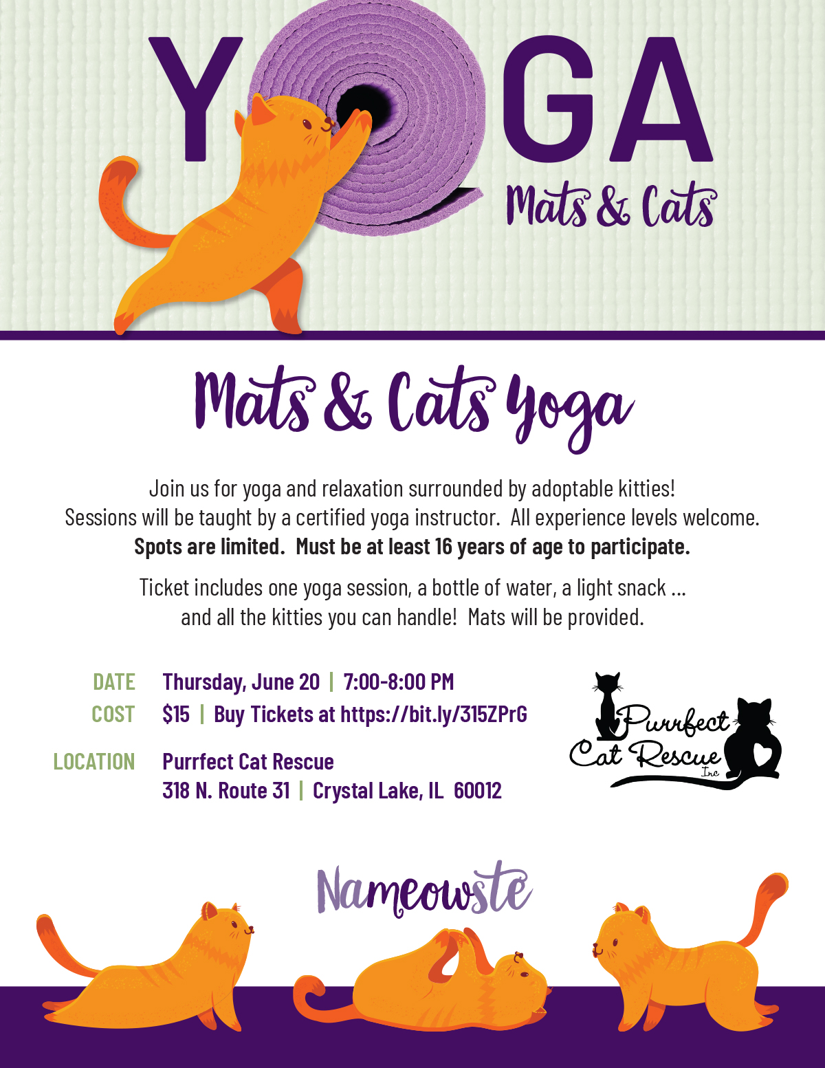 purrfect_cat_rescue_mats_and_cats_yoga_flyer_062019.jpg