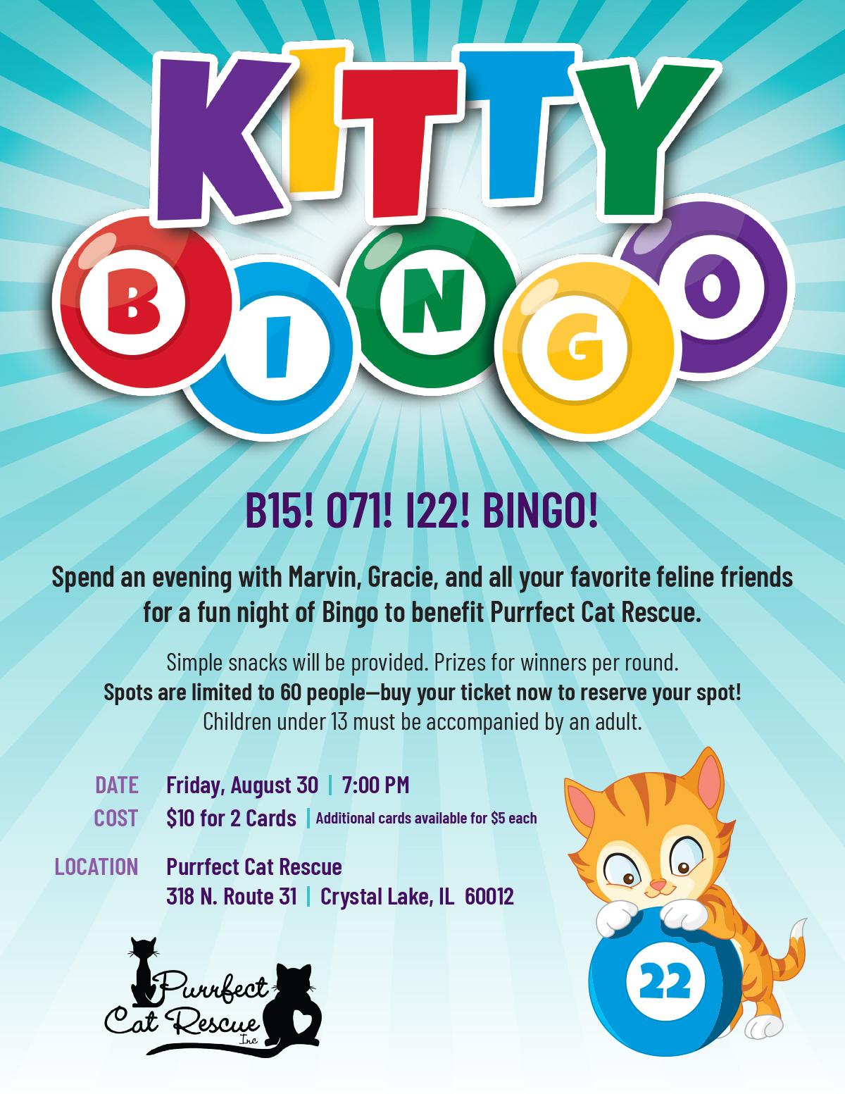kitty_bingo_flyer_083019_1200x1553.jpg