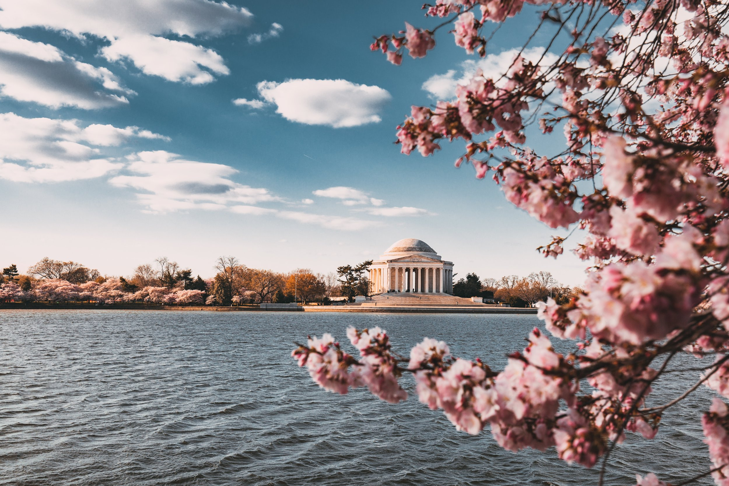 Living in Washington, DC - As the Head Women's Golf Coach at Georgetown University for six years, Katie gained an international perspective. The campus is located two miles from the White House. Living in our capital city makes you acutely aware of our responsibility as global citizens.