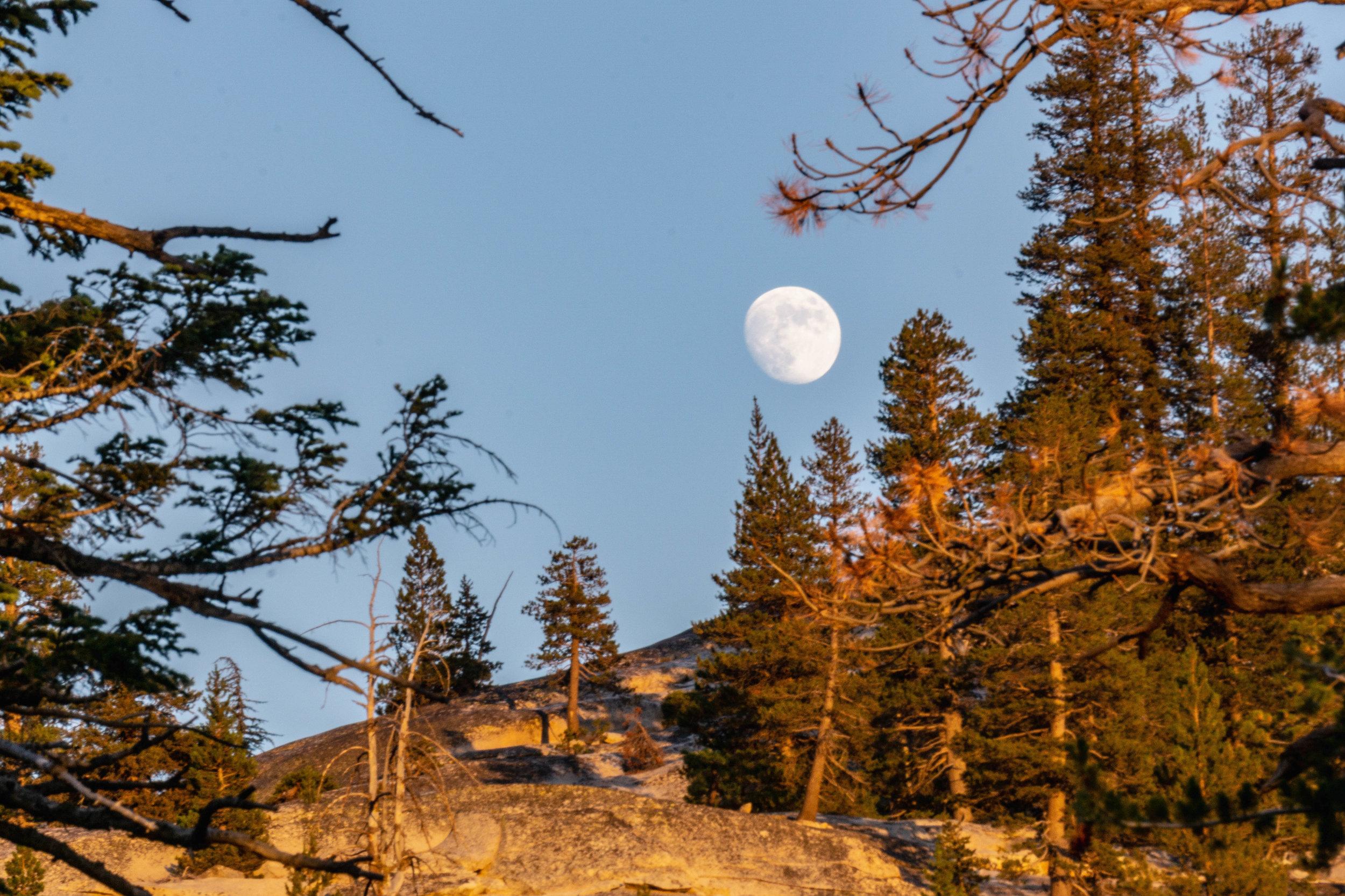 July 23-30 -- Backpacking Yosemite and Tyndall Peak (40 of 113).jpg