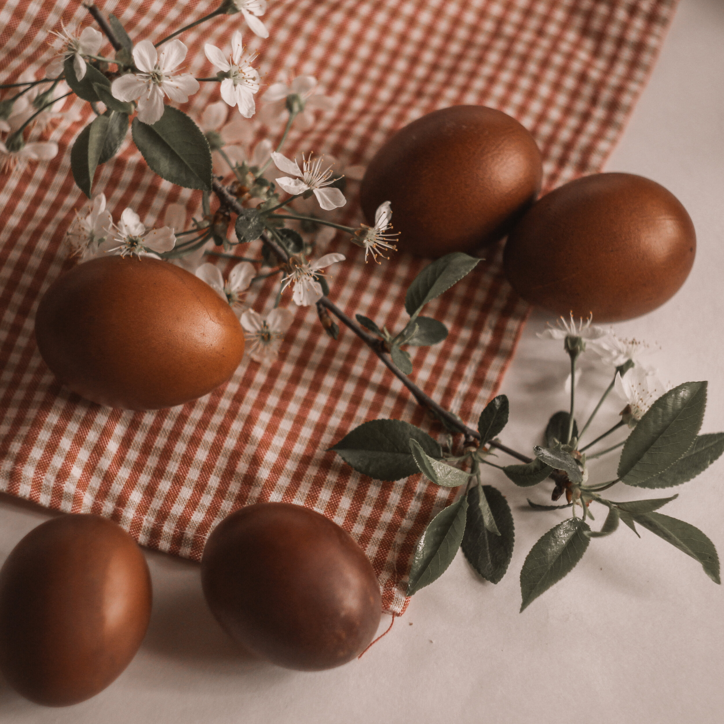 How To Make Homemade Dyed Easter Eggs Using Items You Already Have At Home Czech Center Museum Houston A Place To Celebrate Our World S Art Music Dance And Diverse Cultures