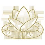 noun_Lotus_1749134_b2a15b (1).png