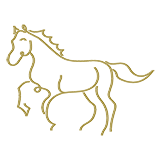 noun_Horse_1284498_b2a15b.png