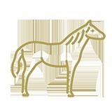 noun_Horse_591415_b2a15b.png