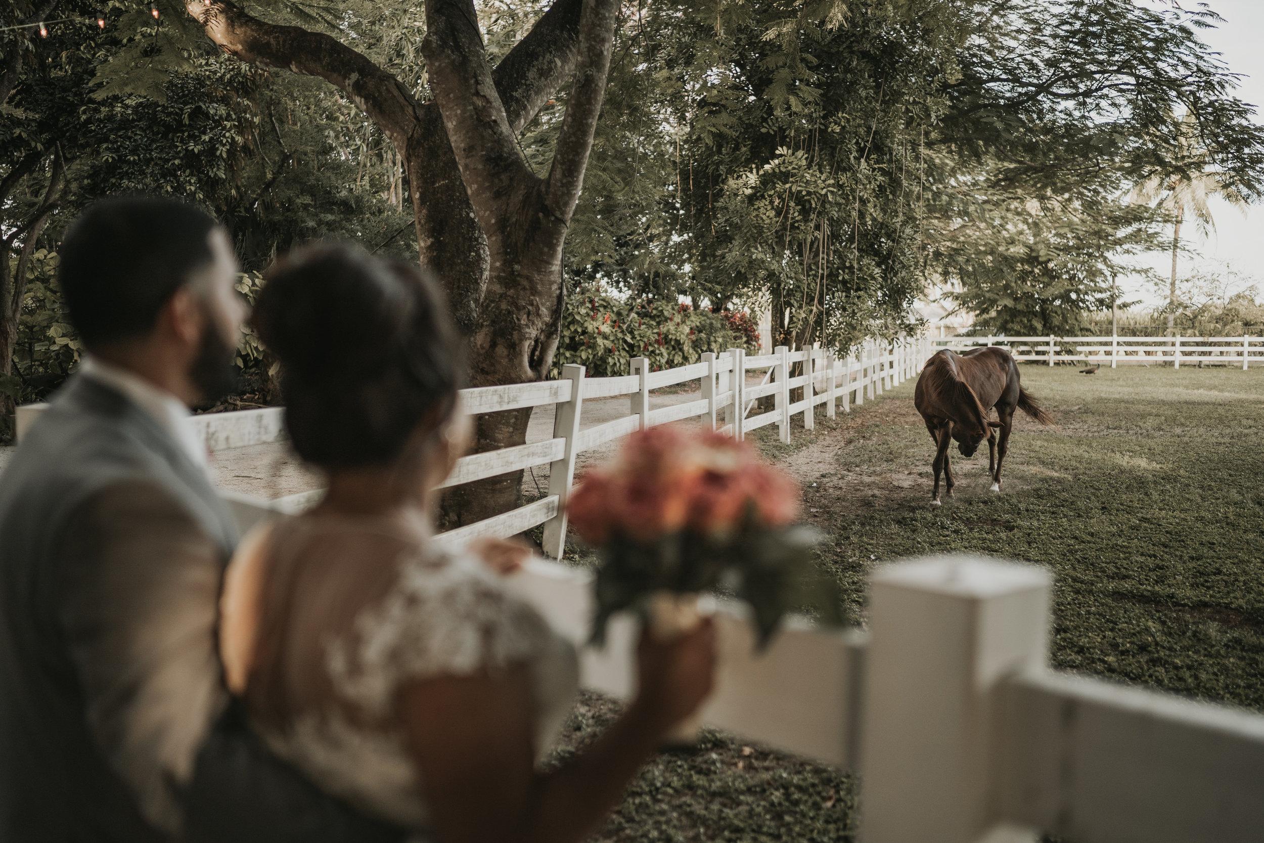 304MICHI&GABEWEDDINGDAY(WeddingFinal).jpg