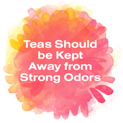 Teas should be kept away from strong odors