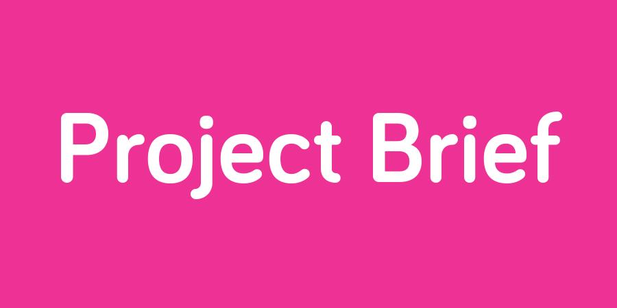 project brief.jpg