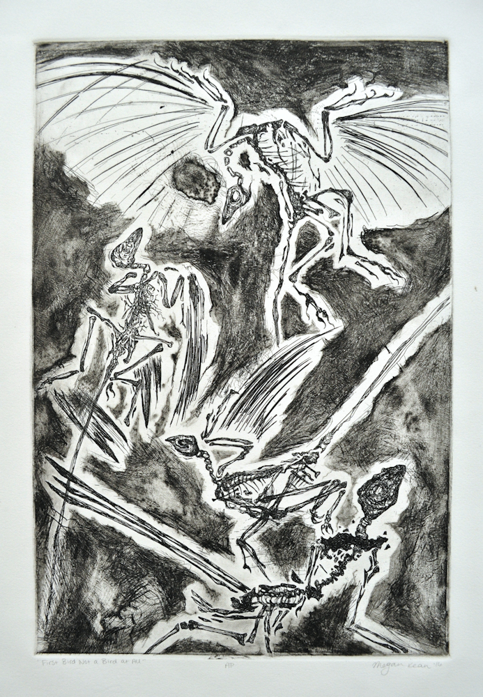 """ First Bird Not a Bird At All,"" 2017. Intaglio etching. 12"" x 18""."