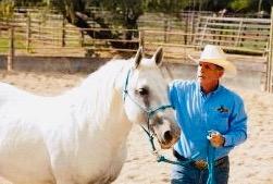 Dr. Hamilton with horse 3.jpeg