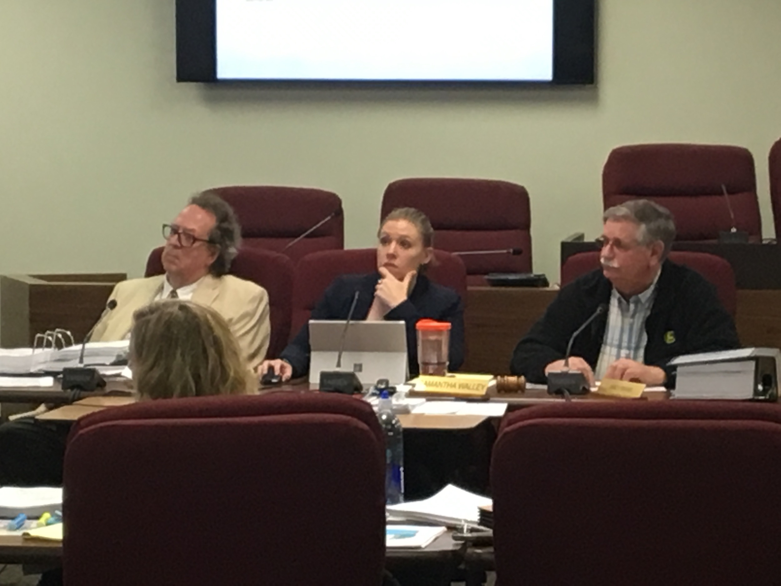 The McLean County Zoning Board of Appeals heard testimony on Tuesday night regarding another proposed wind farm in northern McLean County. (Image credit: Matt Johnson)
