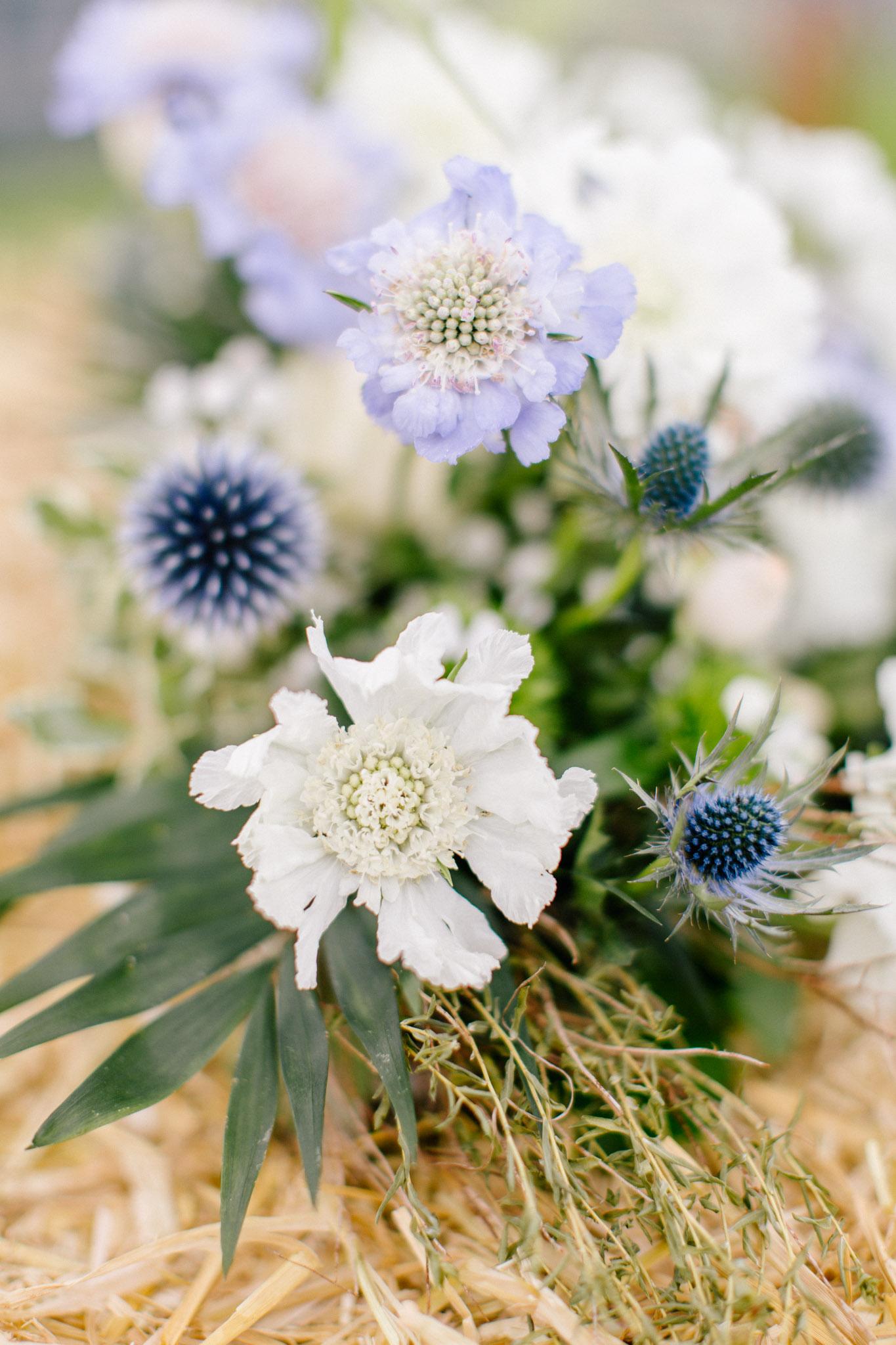 Lenl-Simmental-Buehlerhof-Pia-Anna-Christian-Wedding-Photography-EK-68.jpg