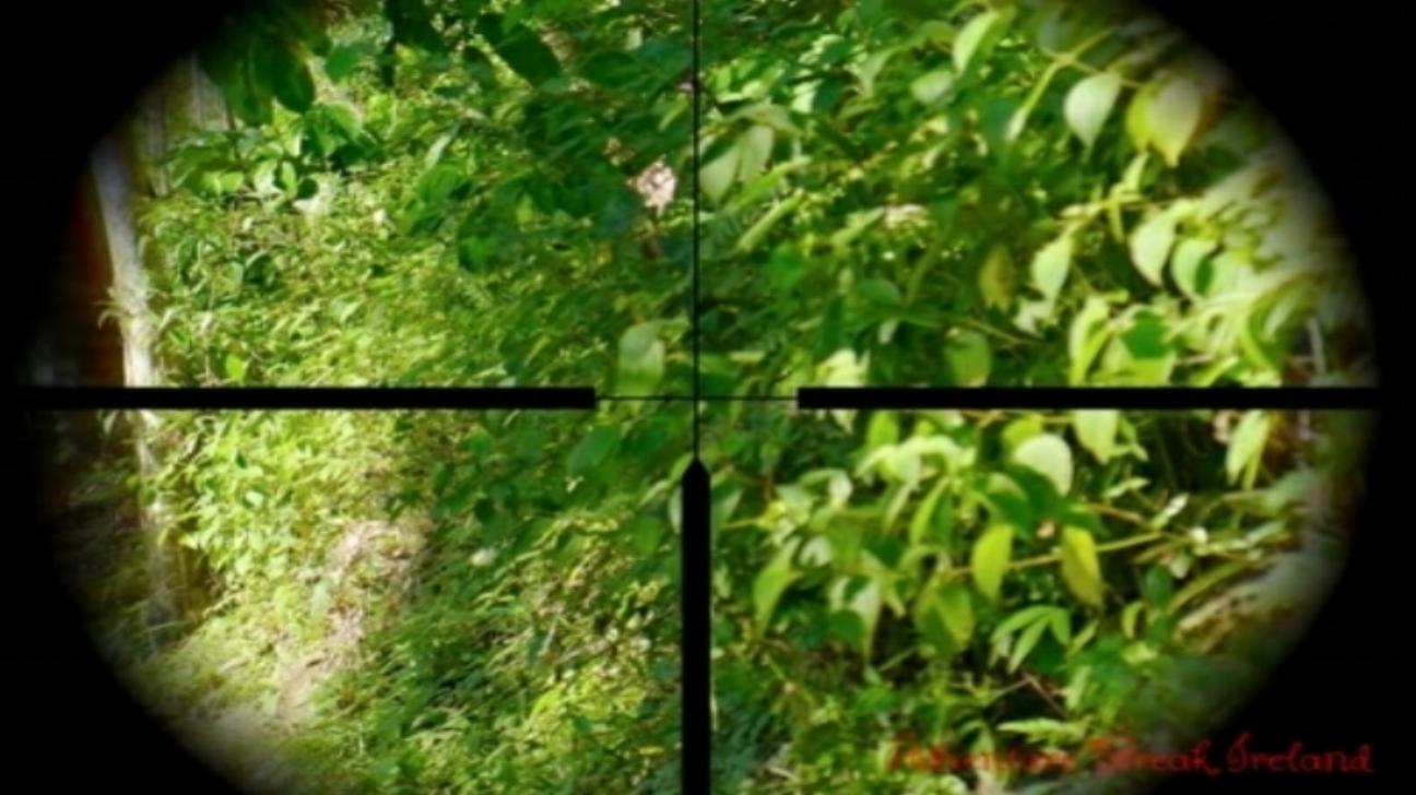 rifle+scope.jpg