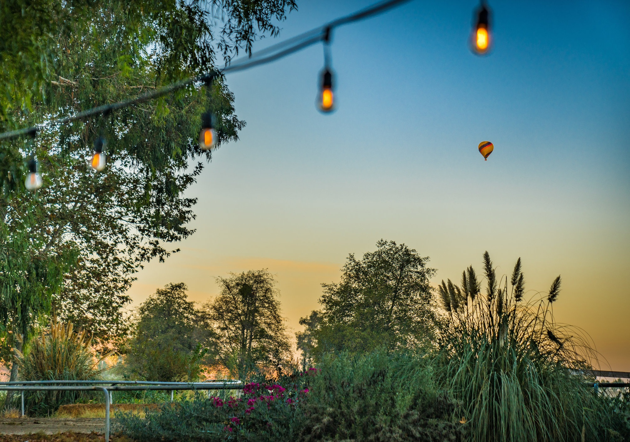 Discover the magic of the Temecula Valley