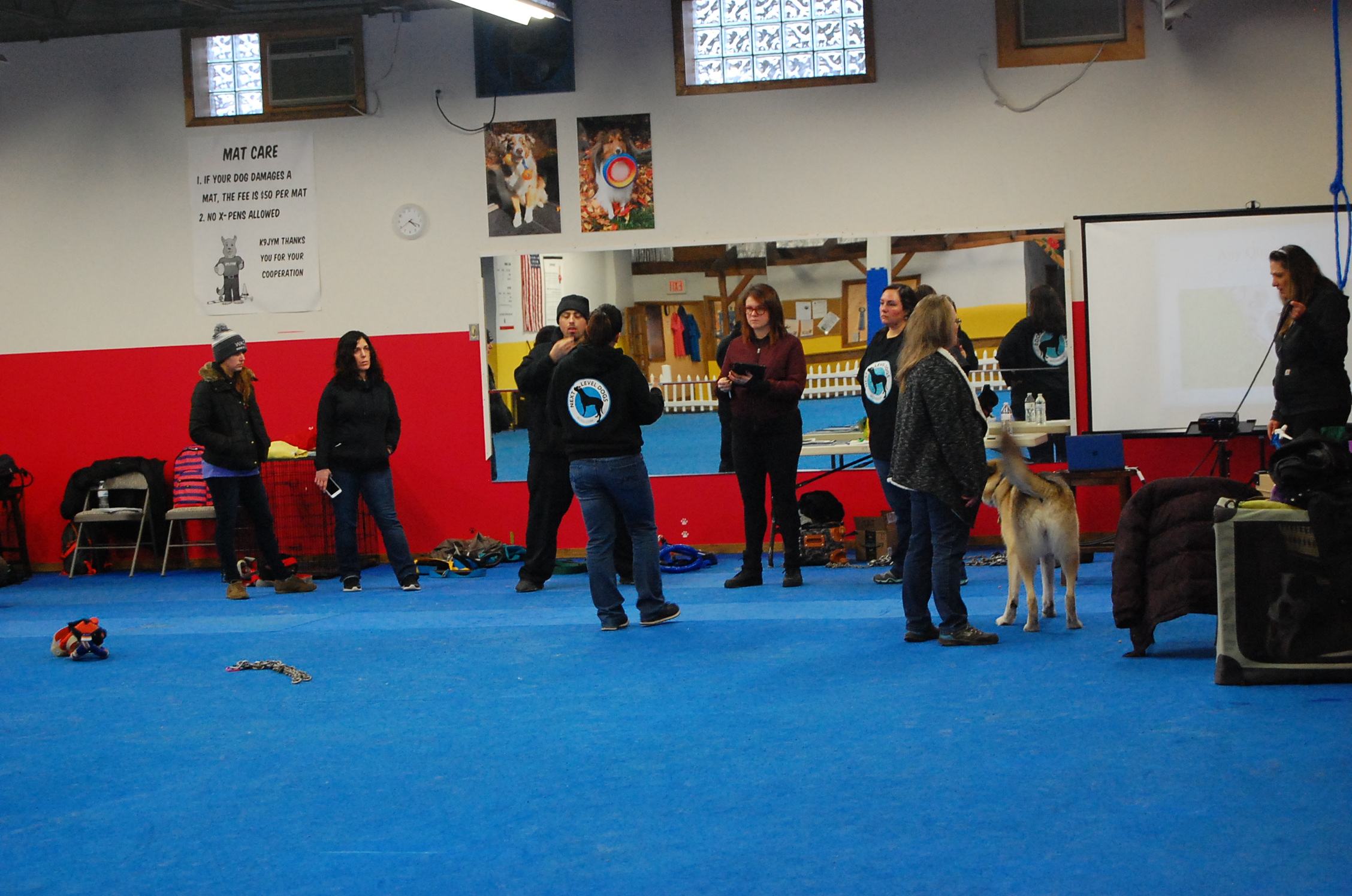 """""""I attended Ashley's Canine Resistance Training Seminar this weekend and it was a fantastic experience. I LOVE learning from other women, especially one who is so dedicated, not to mention a great teacher. I'm so excited more people will be seeing her work as she spreads such valuable information among trainers and owners alike. Her dedication to her dogs, combined with total respect for their well being is food for thought. The CRT program is so approachable, while igniting a flame within people to consider their dog's physical and mental health. How refreshing!""""----Kate, Instinct Dog Training"""