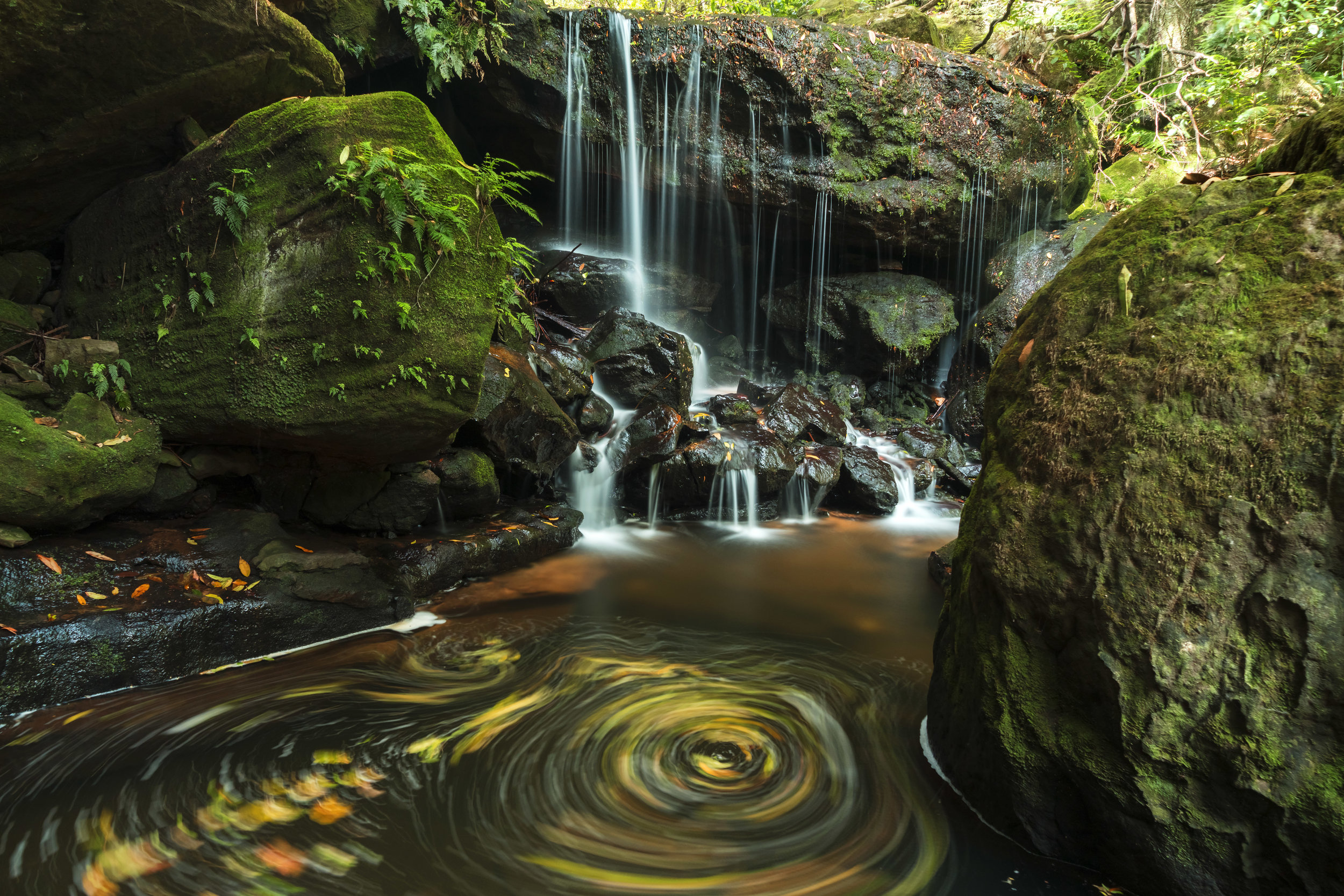 What I foolishly thought was a secret waterfall at Leura is one of the most commonly photographed on the track.