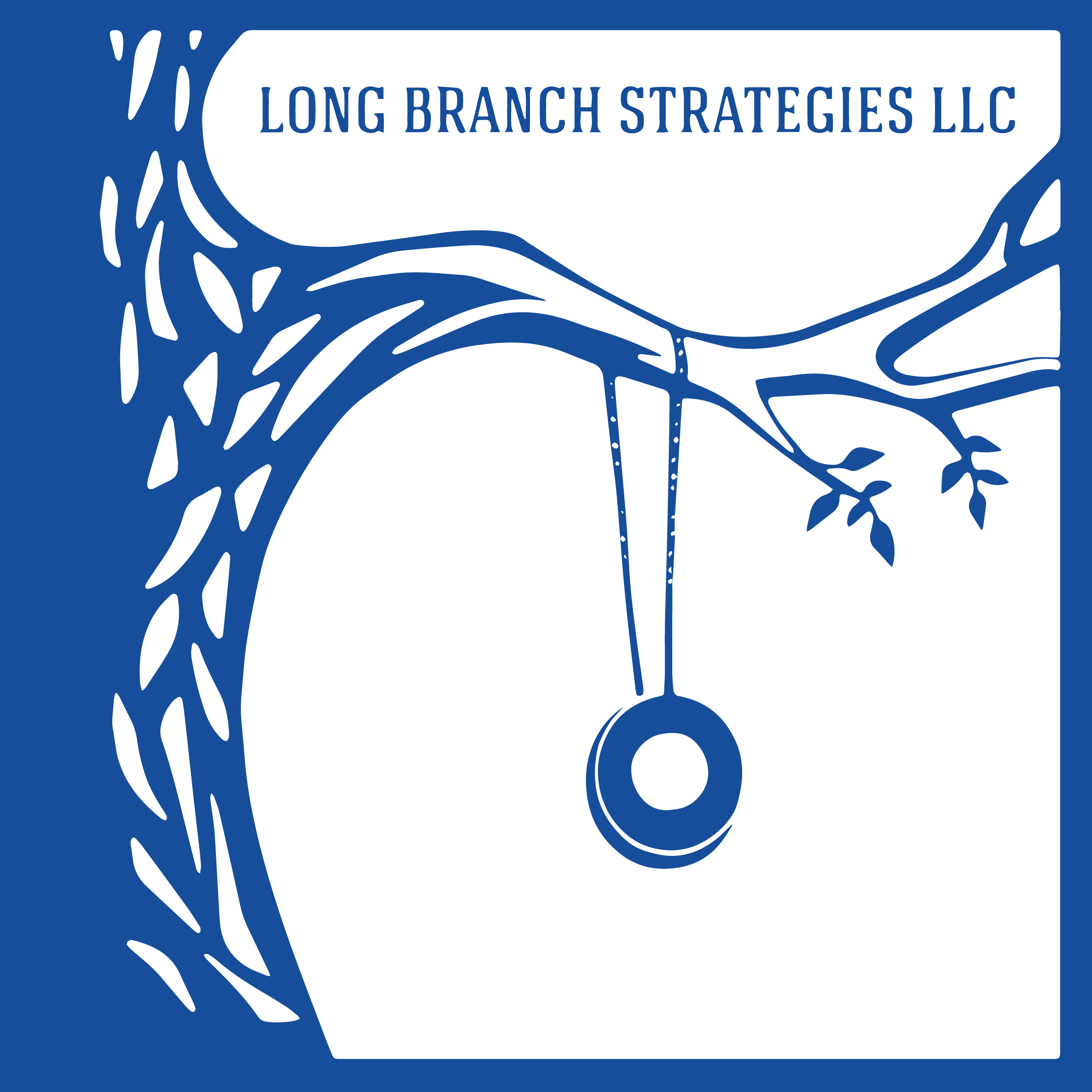 Logo Design - Long Branch Strategies