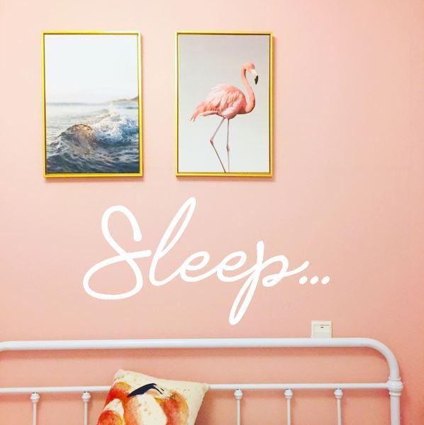 sleep flamingo.JPG