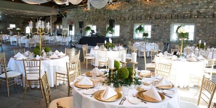 Castle-Farms-wedding-Charlevoix-MI-163949-orig_main.1491253328.jpg