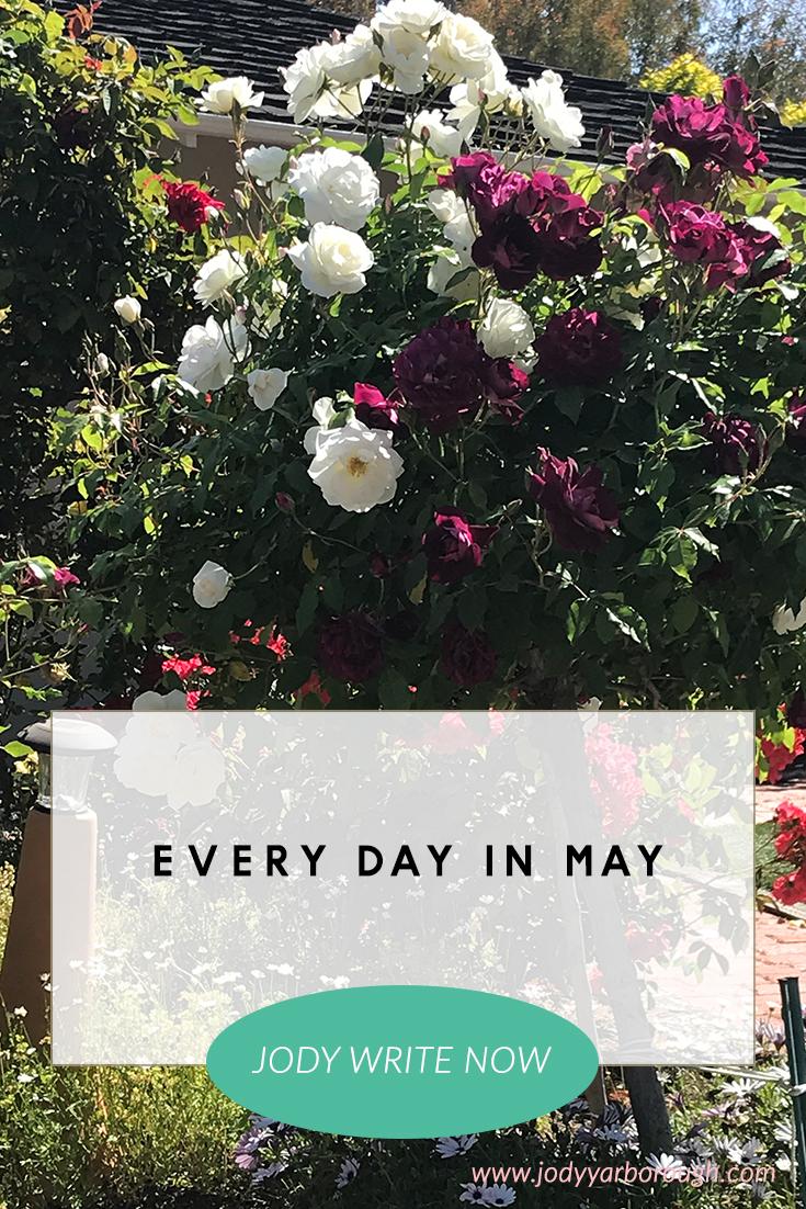 May1EveryDayInMay.jpg