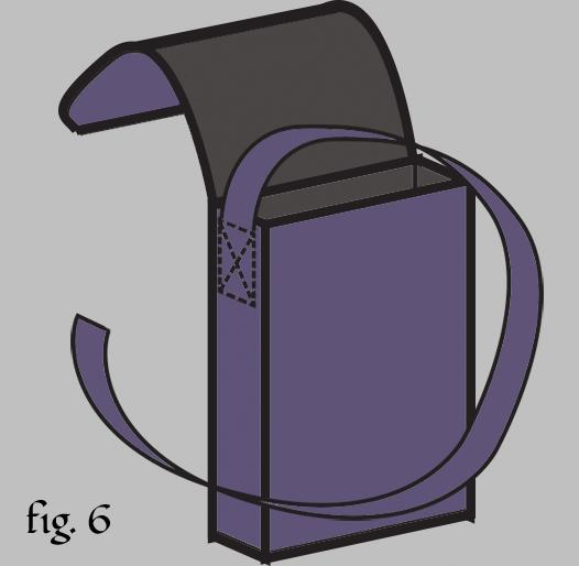 PbagFig6.png