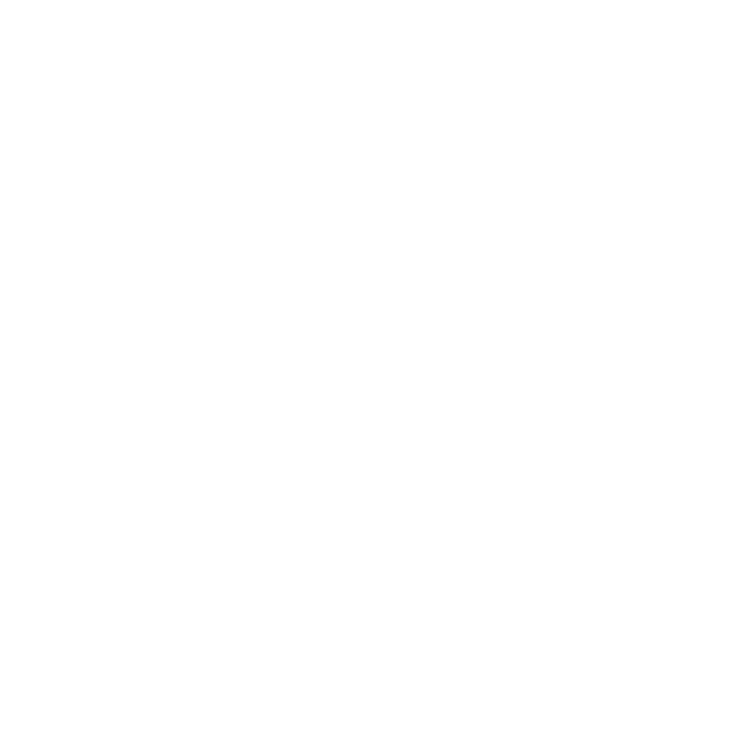 Our Impact_Icon_White_CMS.png