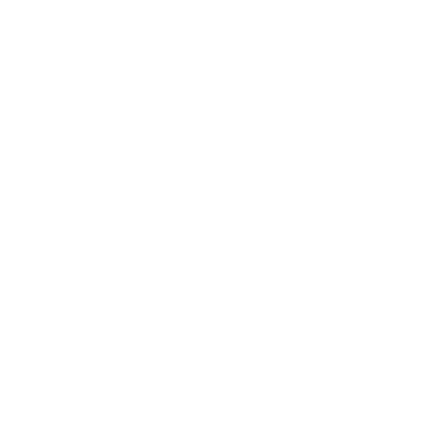 Our Impact_Icon_White_Shield.png