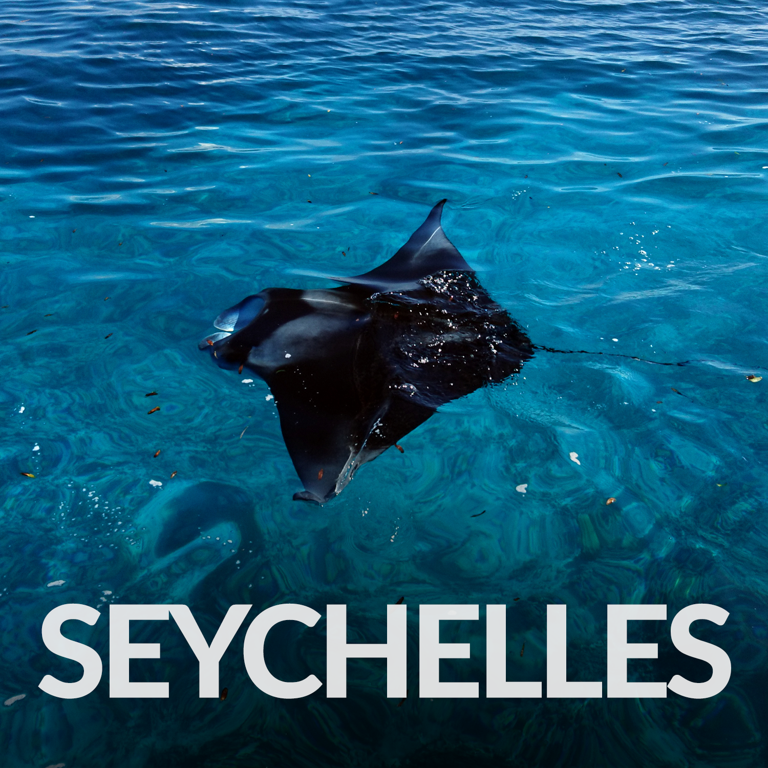 Our Affiliate Projects_Gallery_Seychelles.png