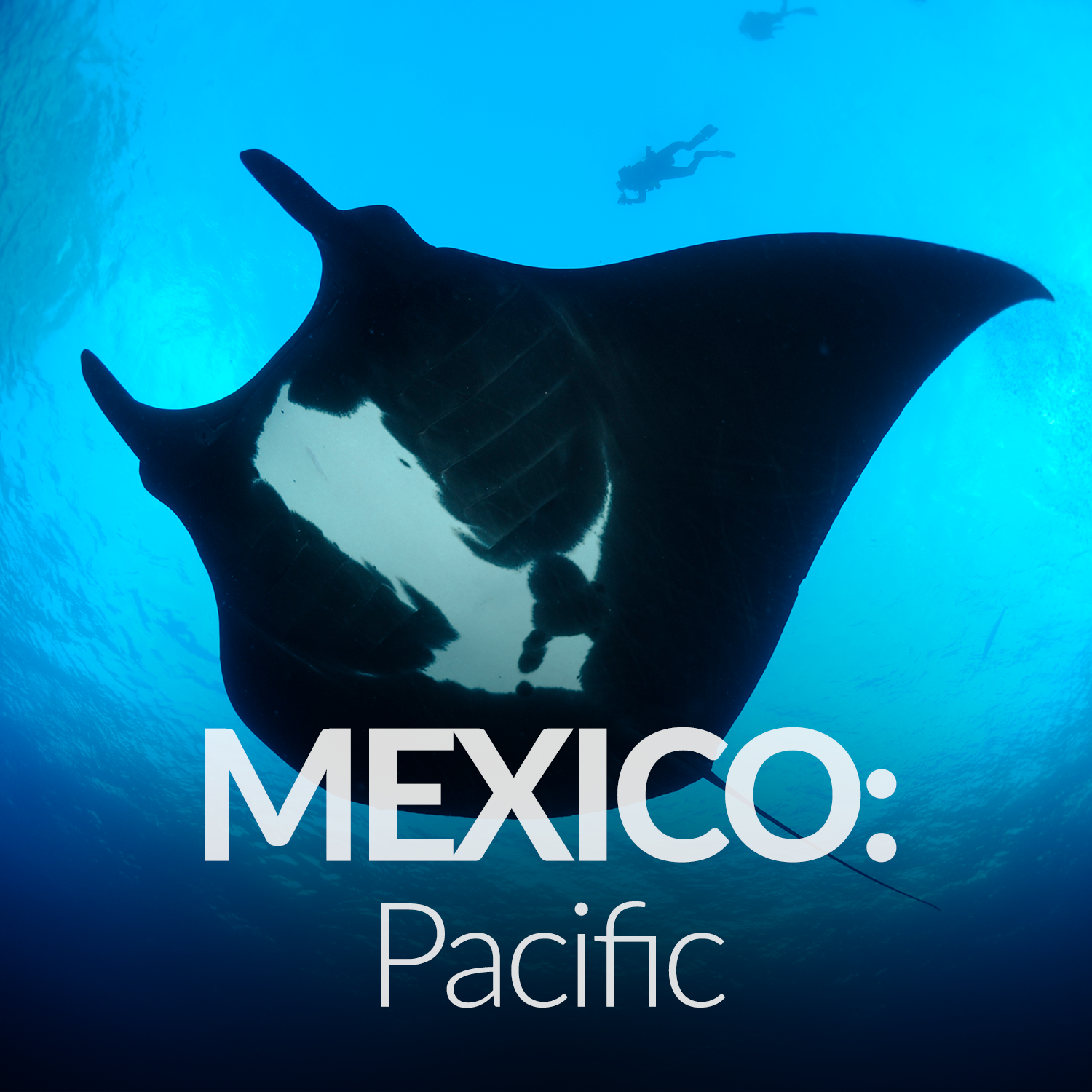 Our Affiliate Projects_Gallery_Mexico Pacific.png