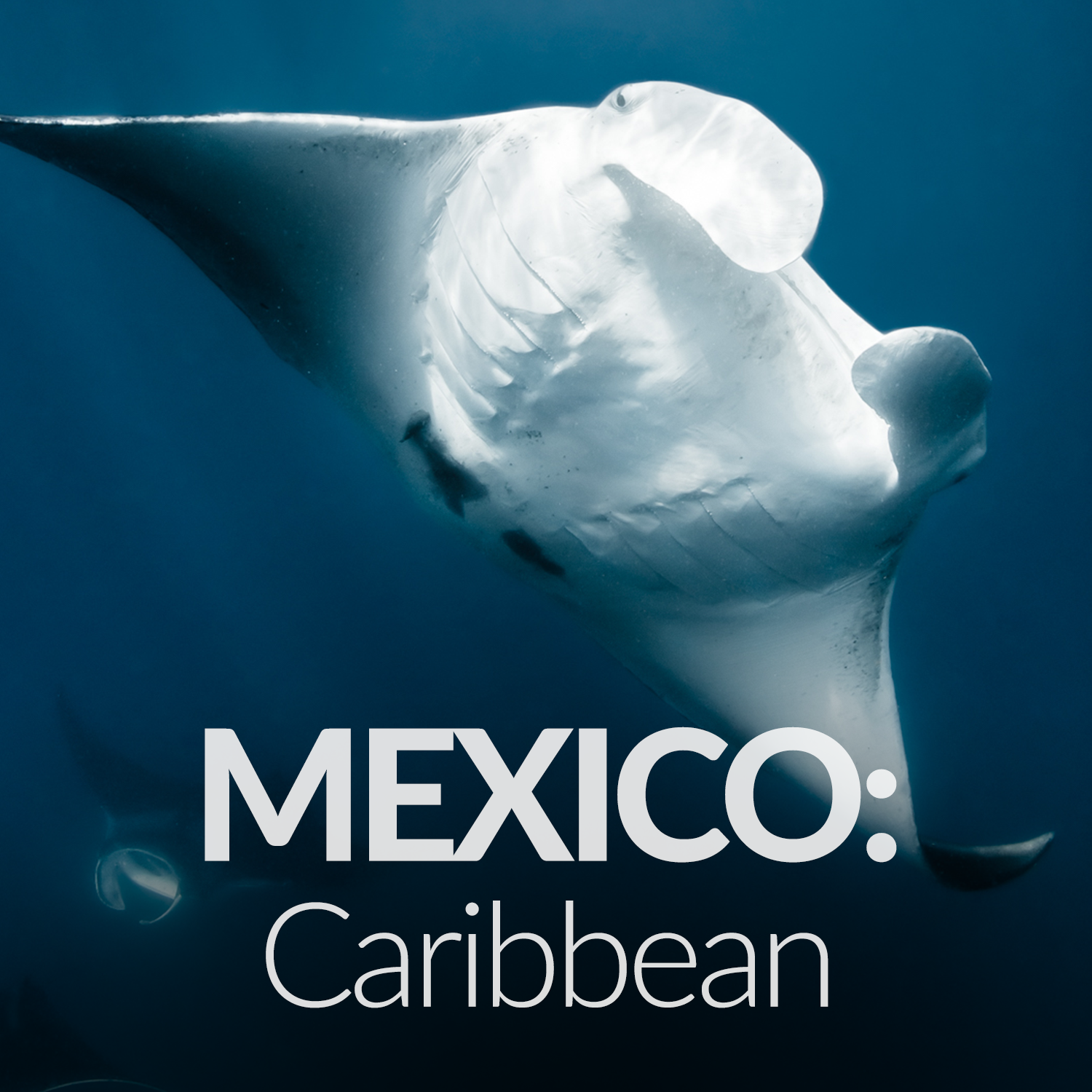 Our Affiliate Projects_Gallery_Mexico Caribbean.png