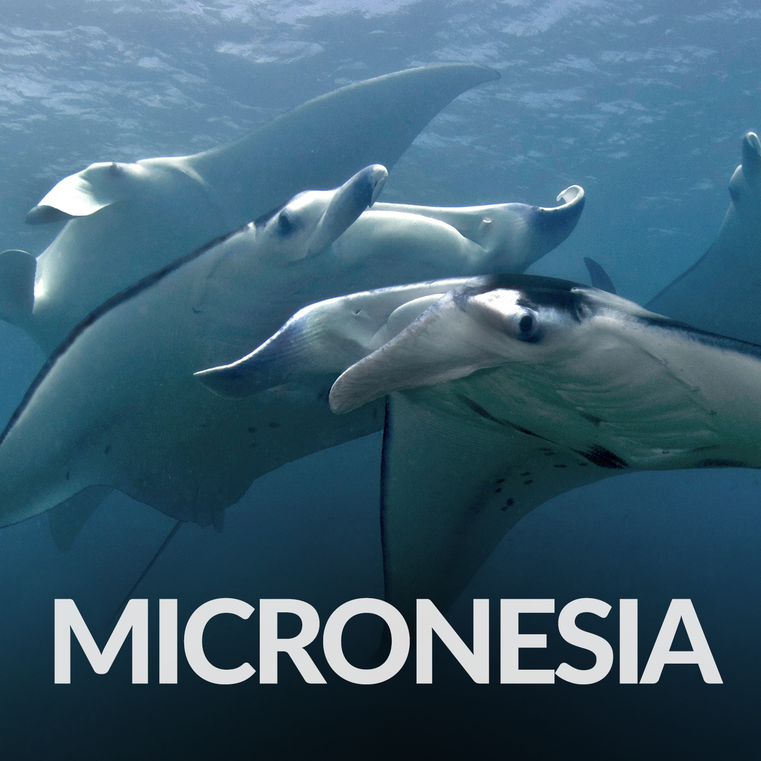 Our Affiliate Projects_Gallery_Micronesia.png