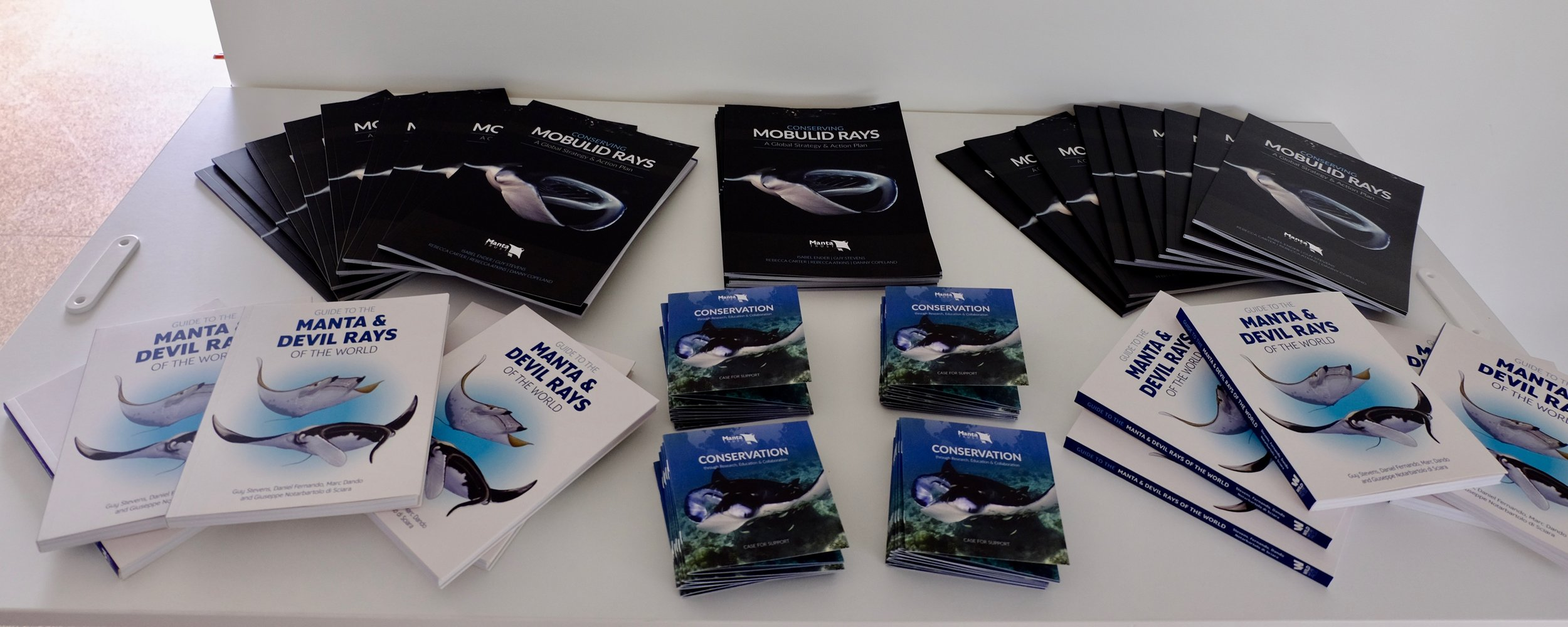 Strategy & Action Plan, Case for Support and Guide to Manta & Devil Rays.jpg