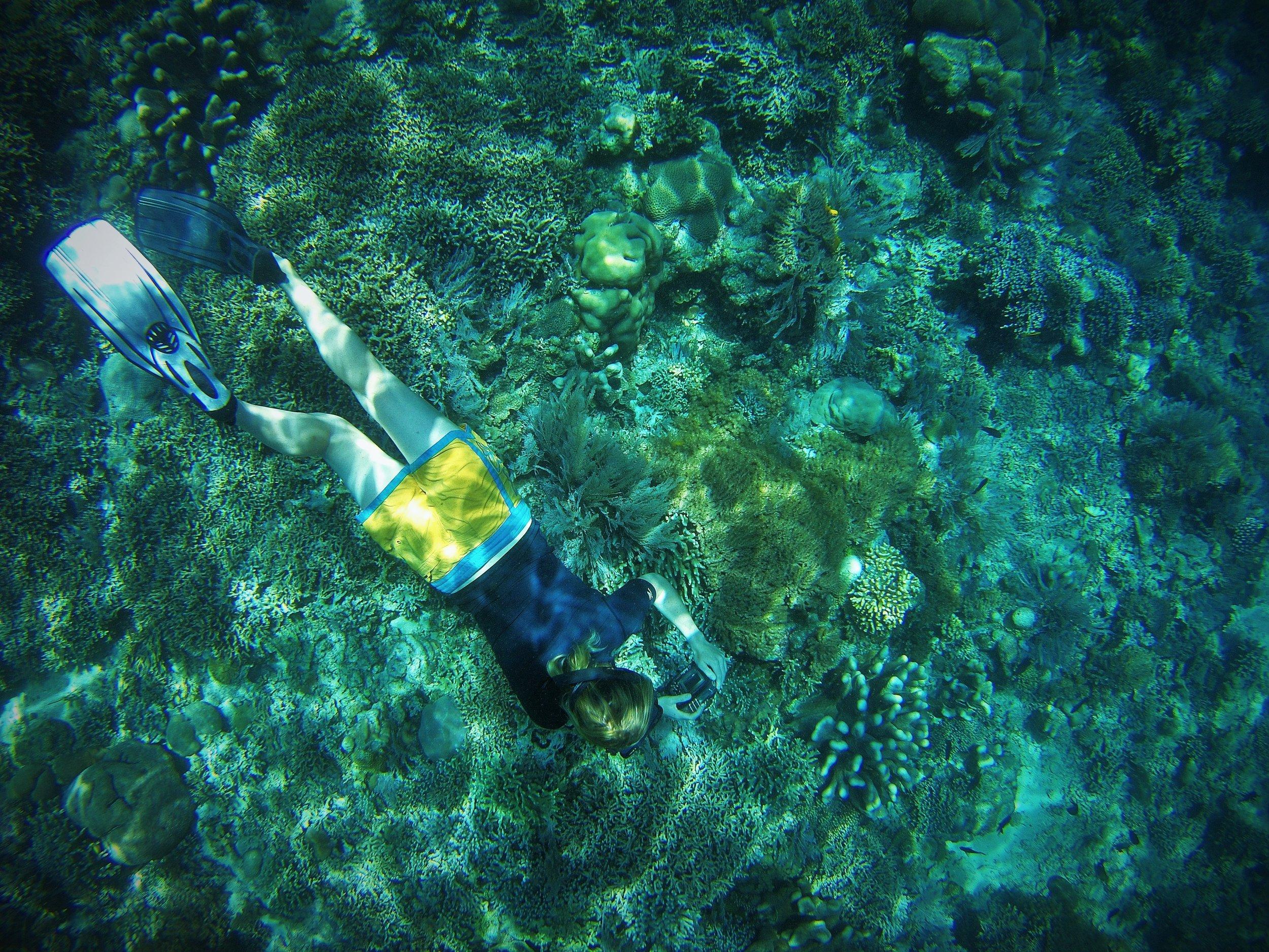 Lyds_snorkeling.jpg