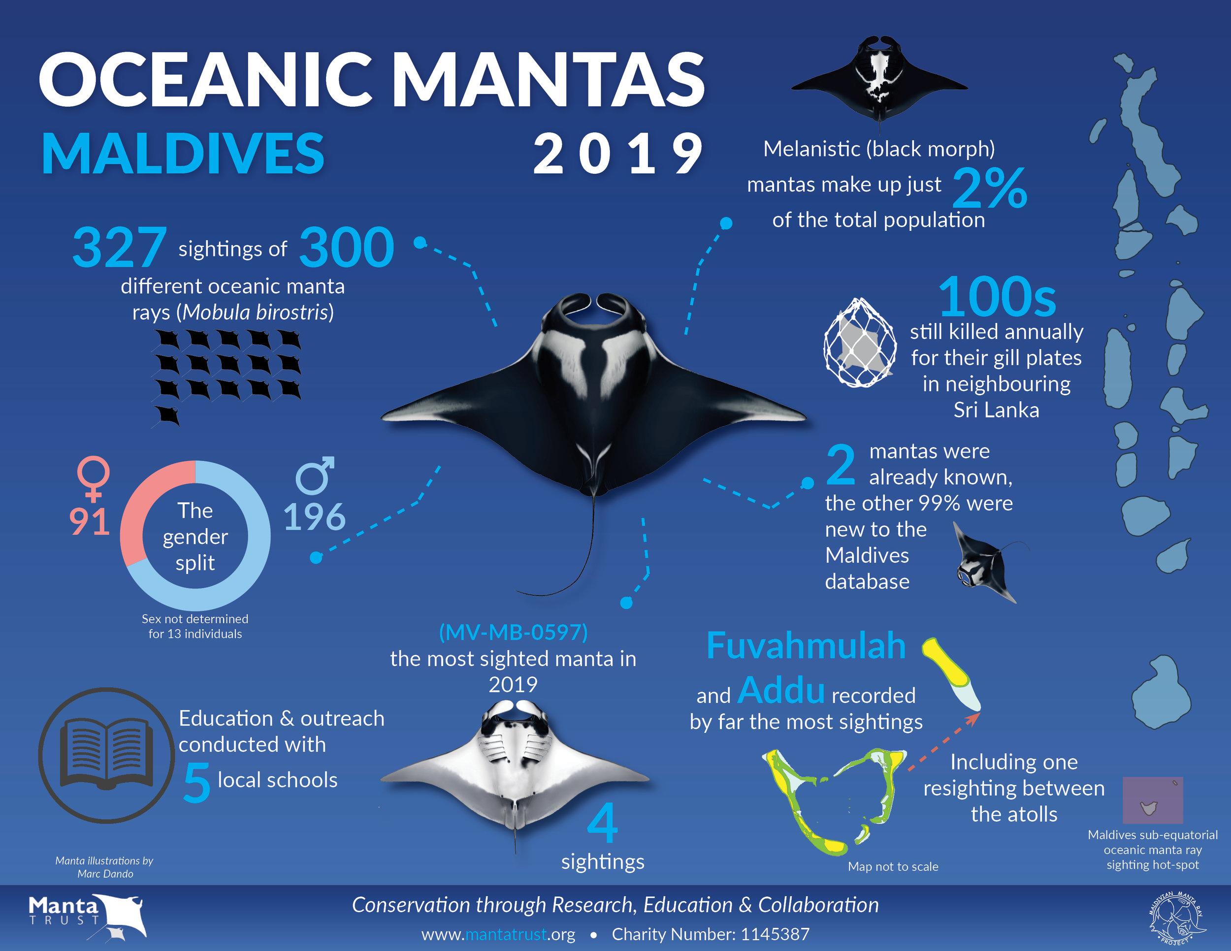 Report Infographic_MV Oceanics_2019.jpg