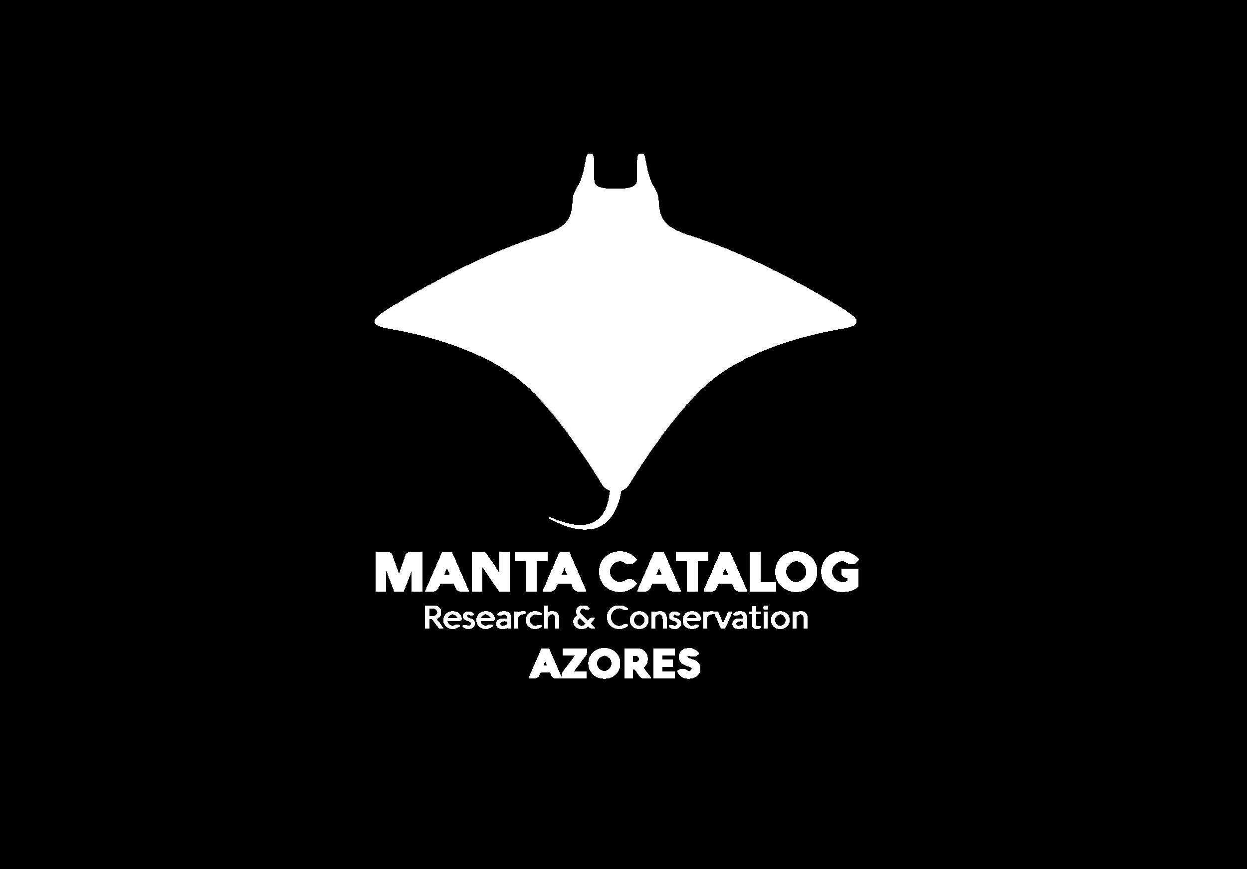 Logo_MC_Final_03.png