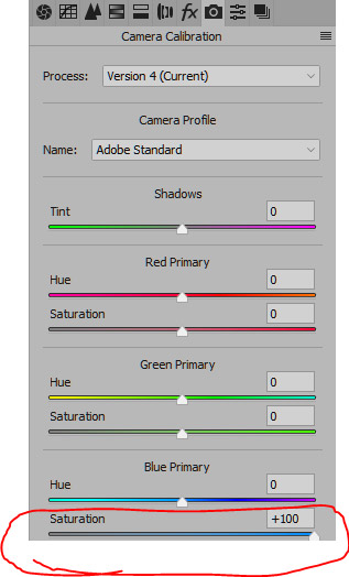 Camera Calibration tab