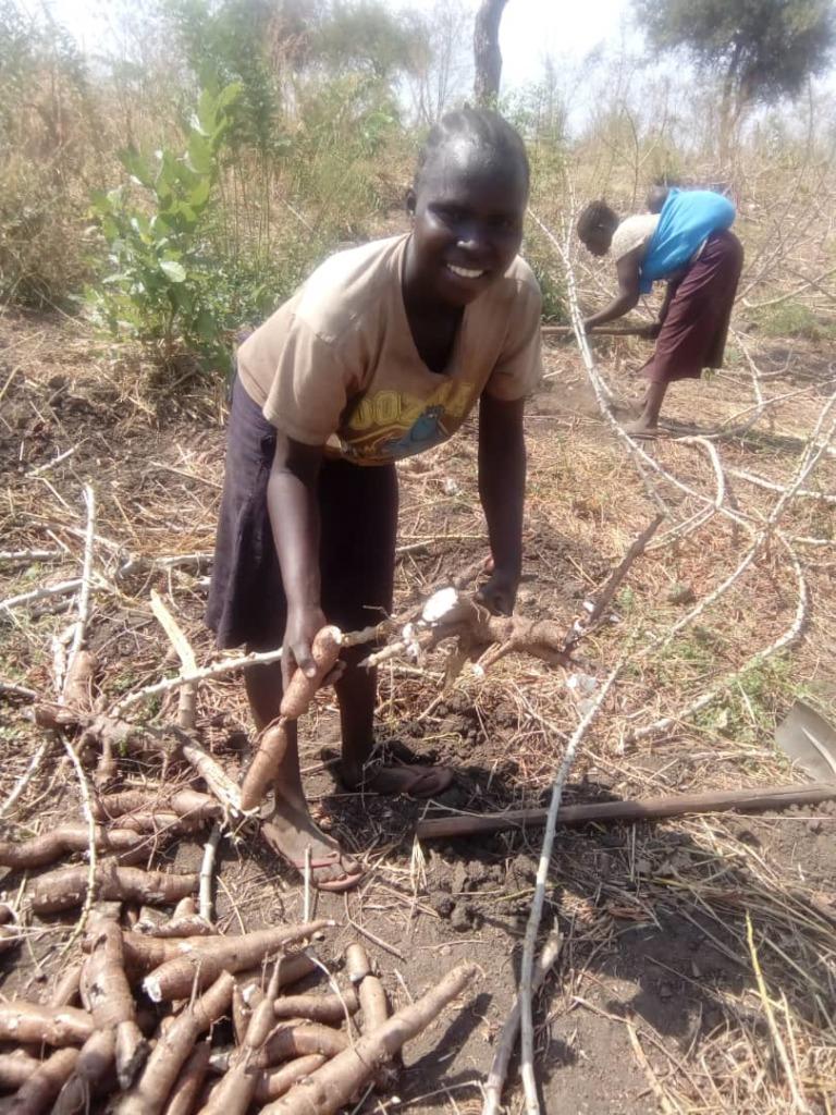 Kasava harvested for Rose's community.