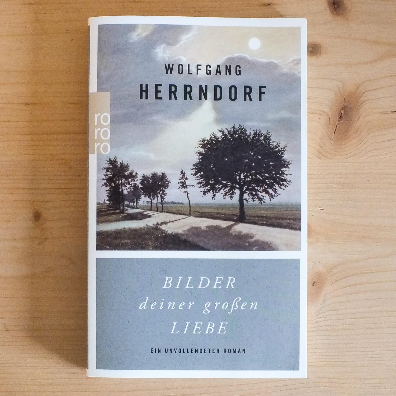 Wolfgang Herrndorf, Bilder Deiner Großen Liebe: Ein Unvollendeter Roman  (Berlin: Rowohlt, 2014).   Buch der Woche vom 15. Juli 2017
