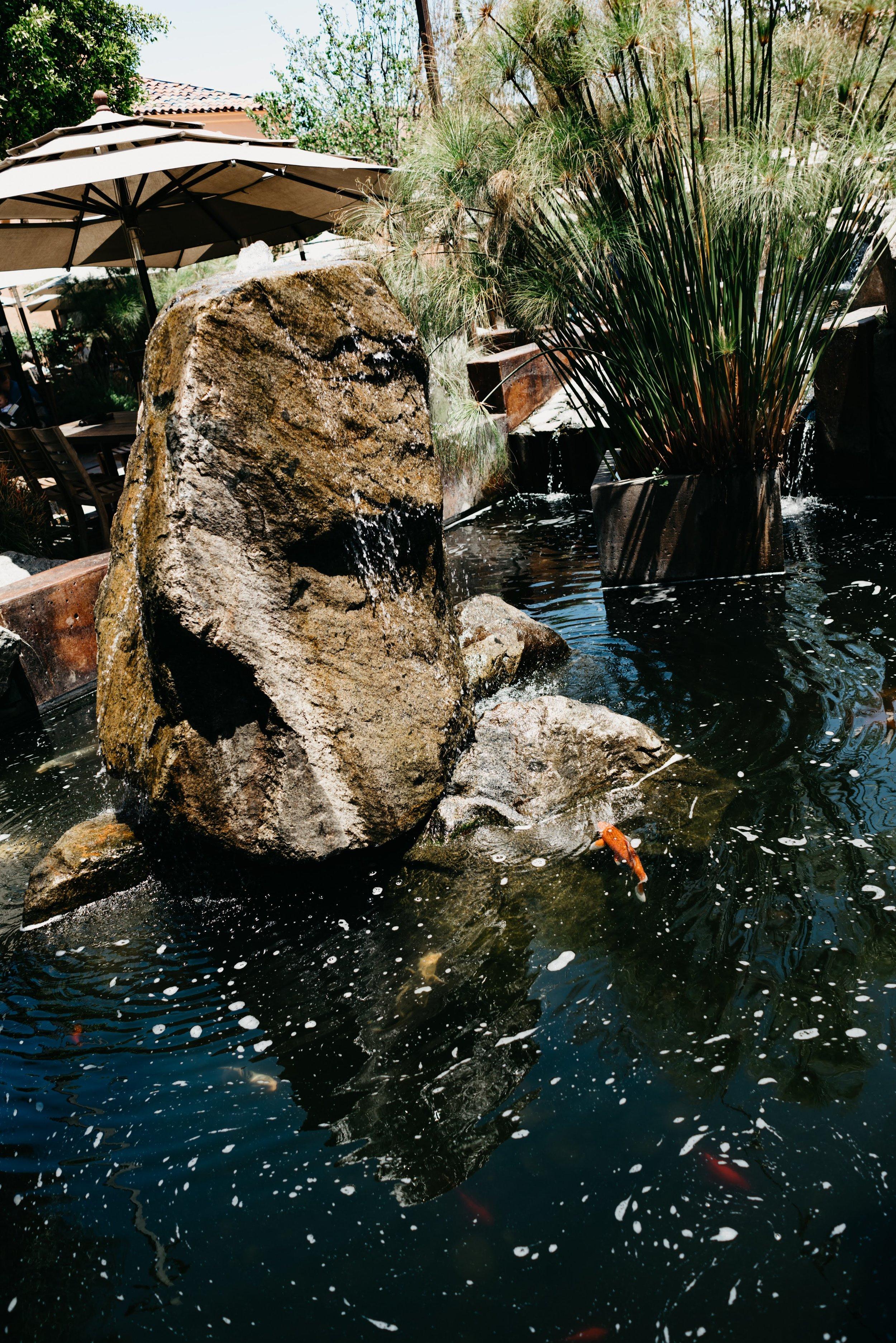 Stone Brewing, San Diego, CA // www.DOODIEBEARZ.com