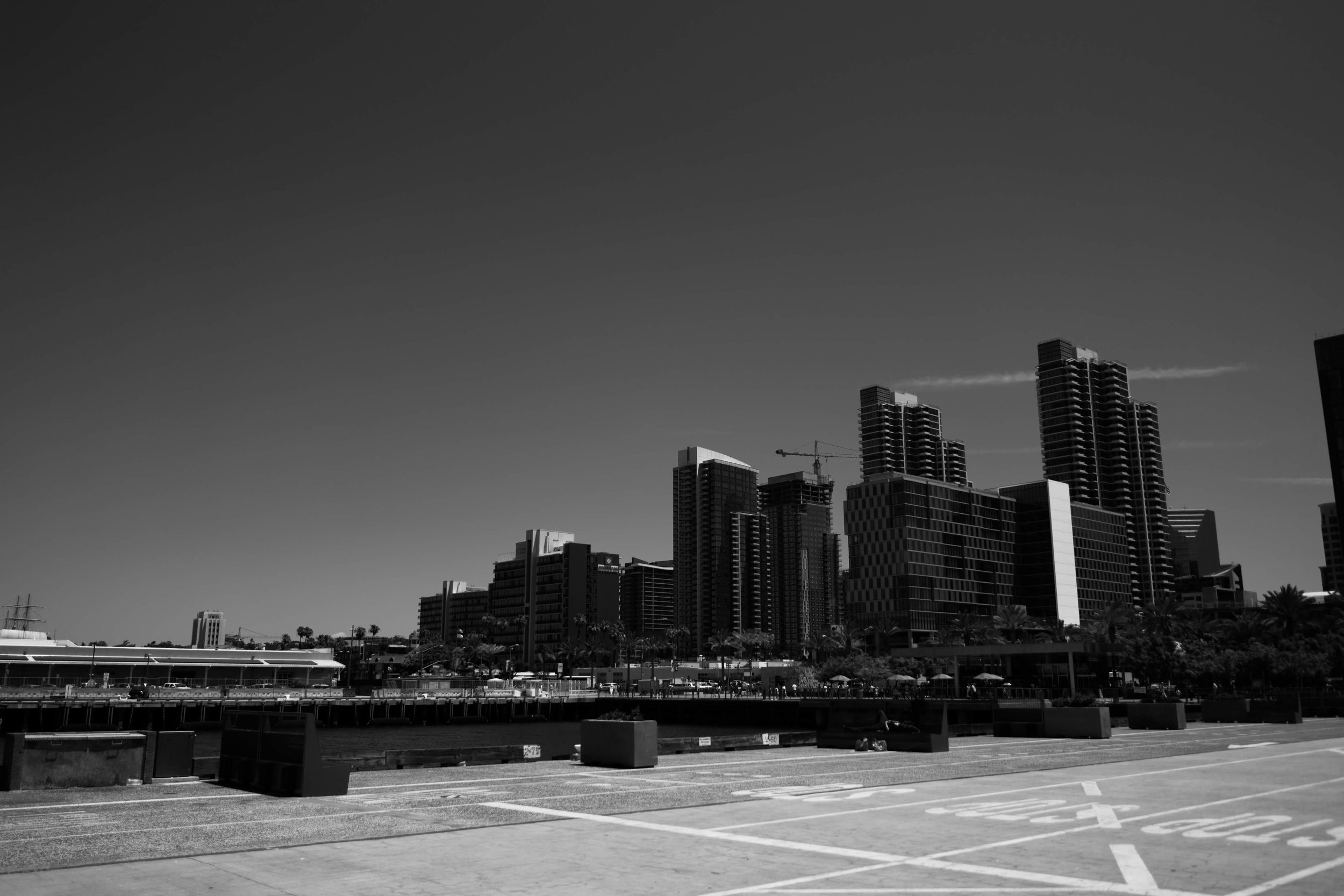 Embarcadero, San Diego, CA /// www.doodiebearz.com