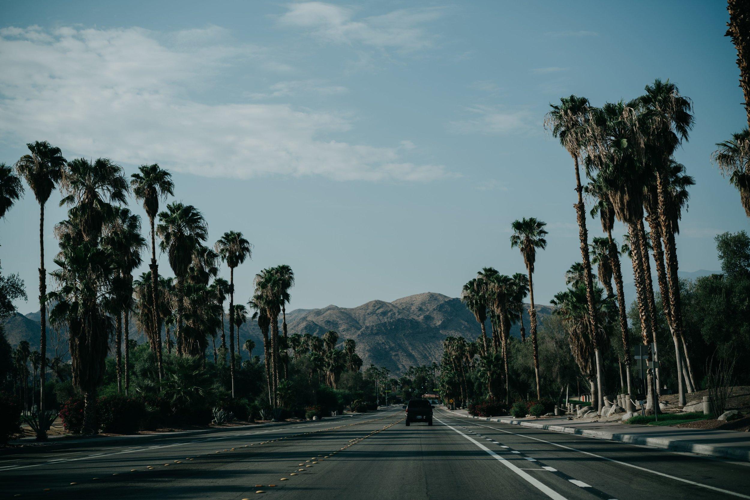 Palm Springs, CA /// www.DOODIEBEARZ.com