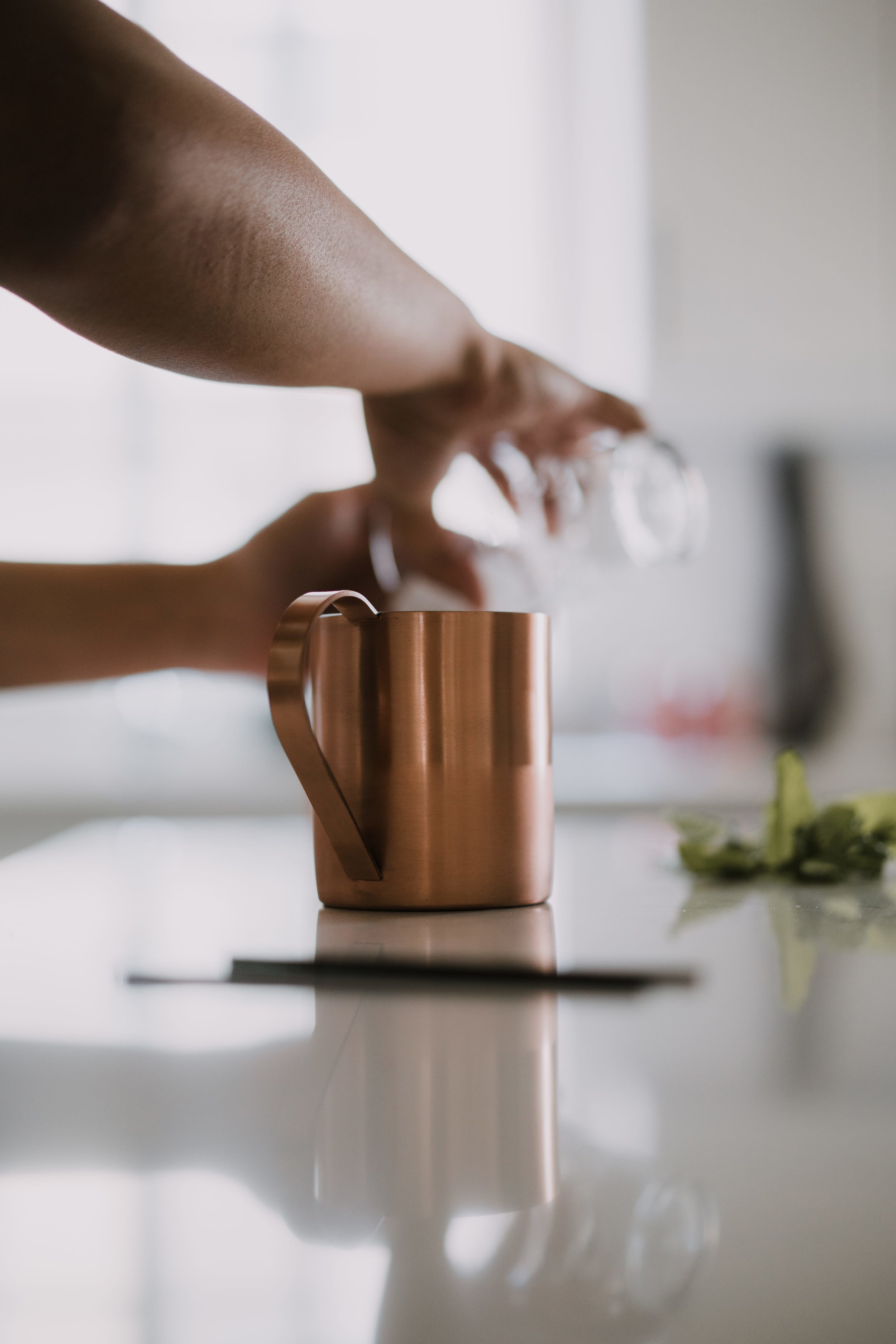 Moscow Mules at Home /// www.DOODIEBEARZ.com