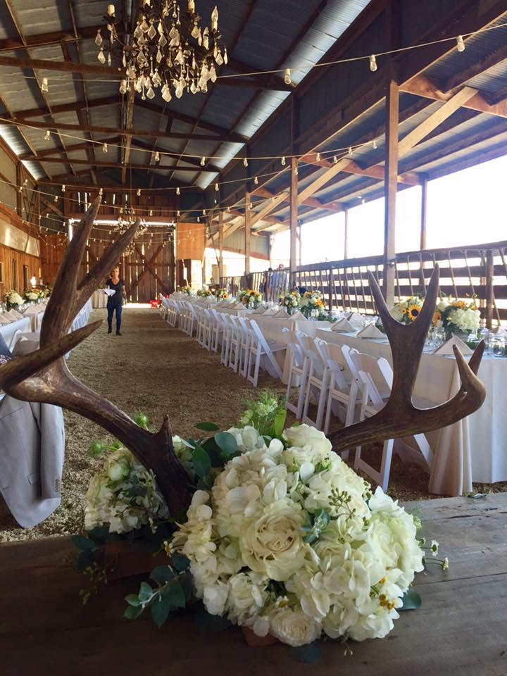 Rustic Cow Track Ranch, Boho Chic meets backyard ranch wedding.