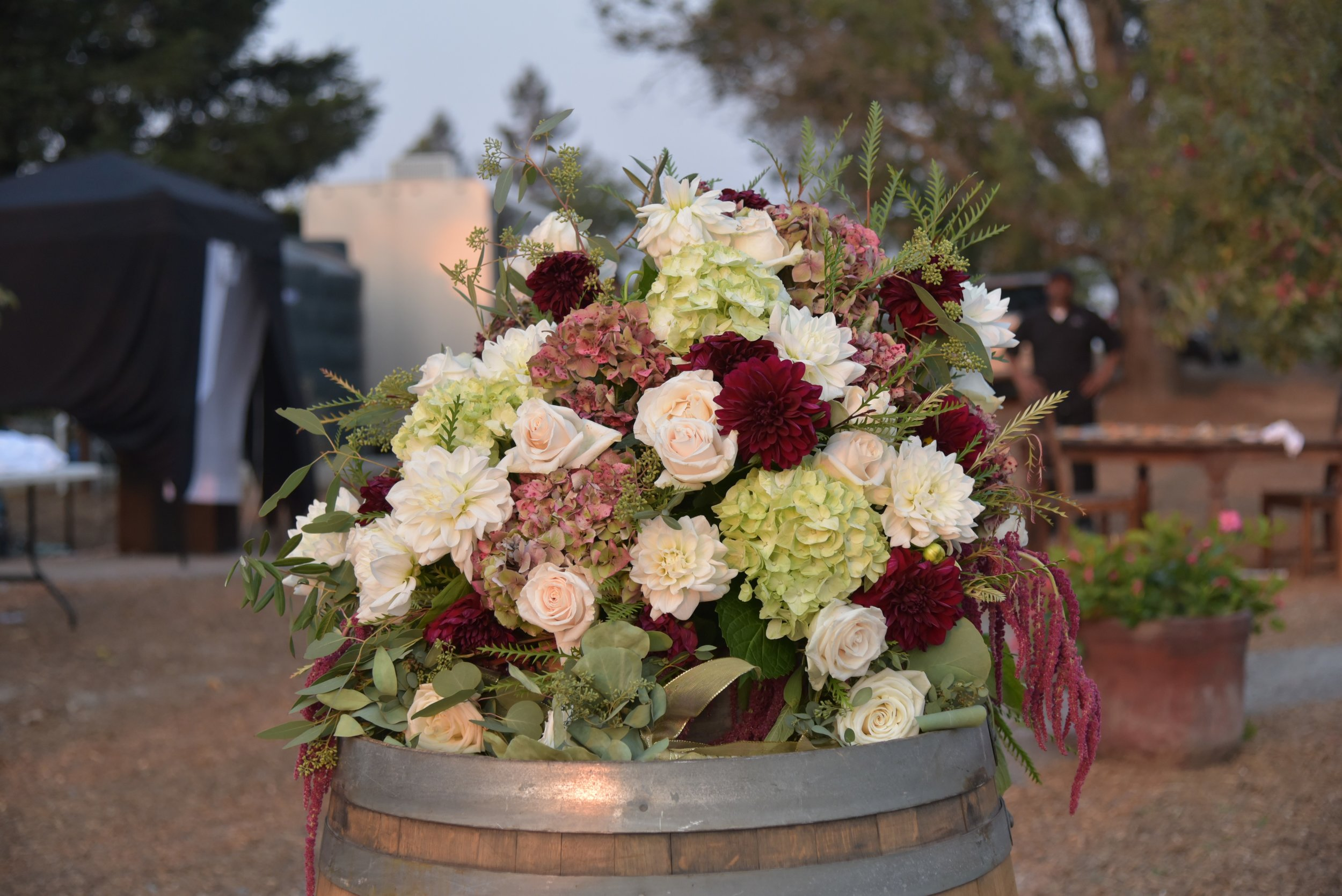 Sebastopol ranch wedding, wine barrel topper in contrasting colors of green hydrangea, burgundy dahlia and blush roses.