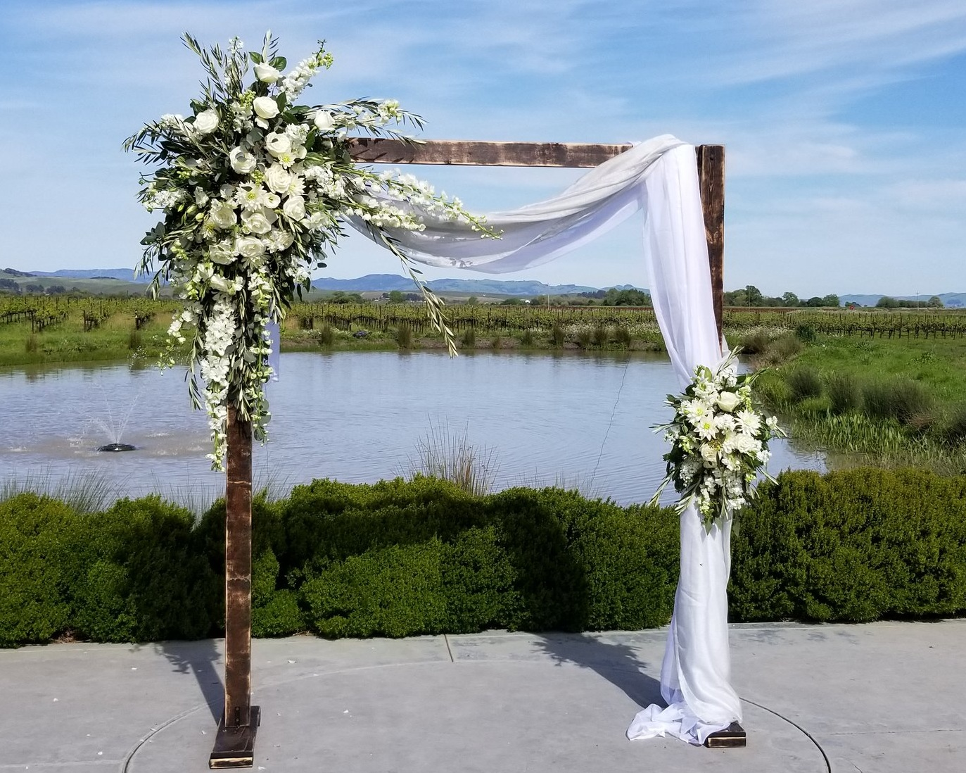 Romantic rustic wedding arch draped with two-tone white and dusty blue cloth. Asymmetrical floral pieces featuring fresh garden roses, English roses, ranunculus, dahlia, stock, with olive and eucalyptus greens. Sonoma wine country wedding ceremony at Tyge Cellars.