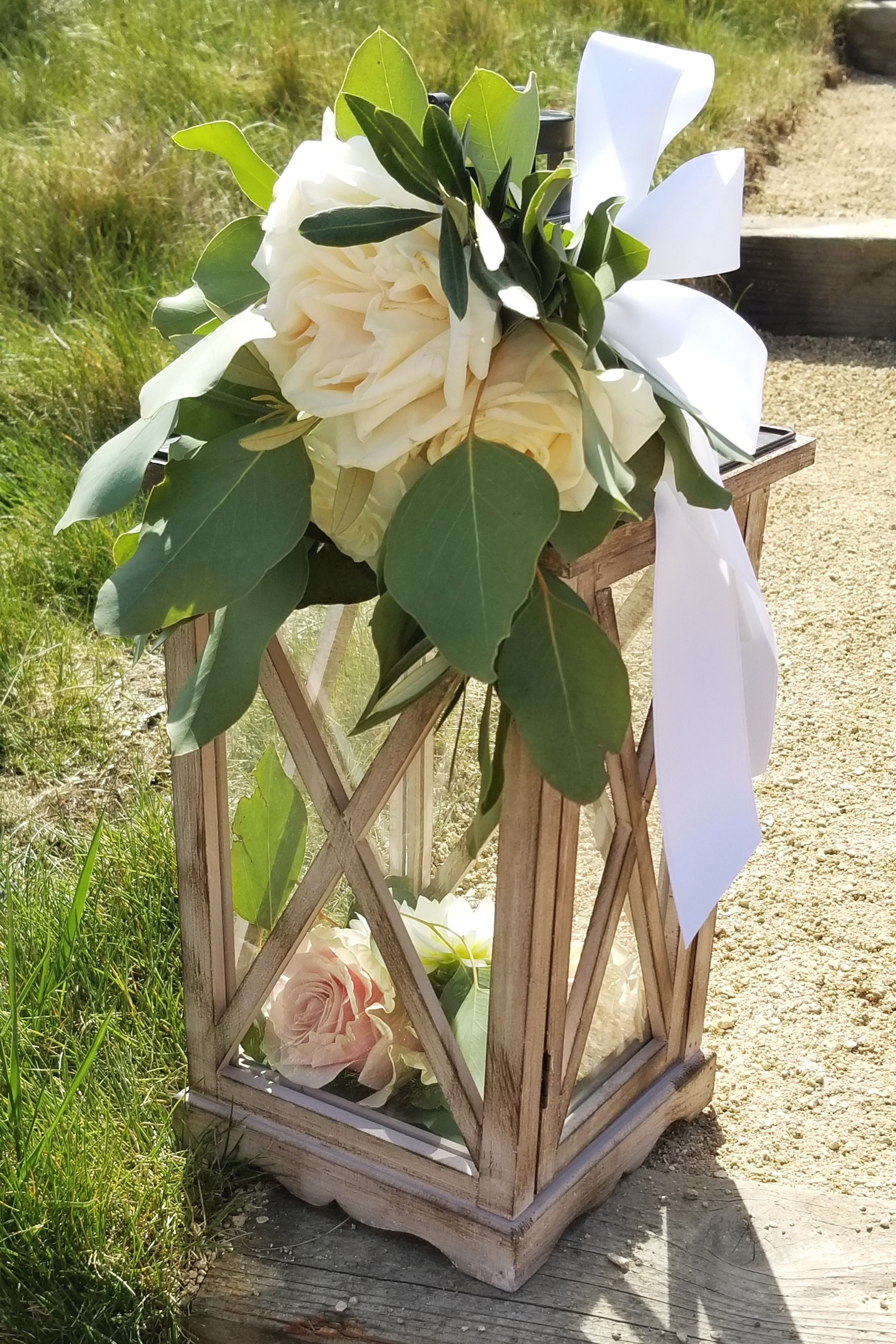 Rustic lantern filled with fresh garden roses and greens line the walkway to the ceremony in the Sonoma Vineyard.