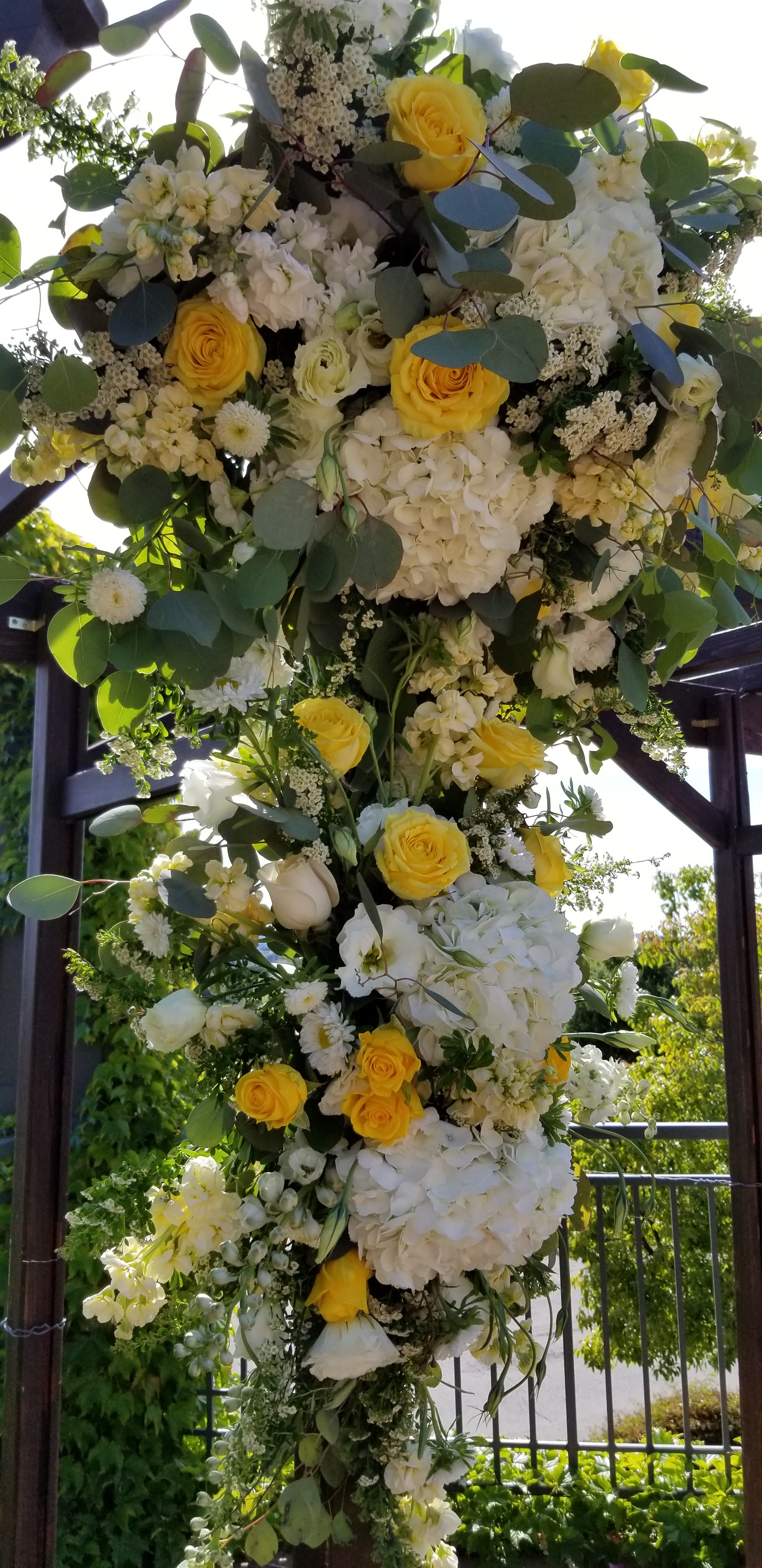 Soft creamy white with bright yellow featured on the wedding arbor at Stonetree Novato