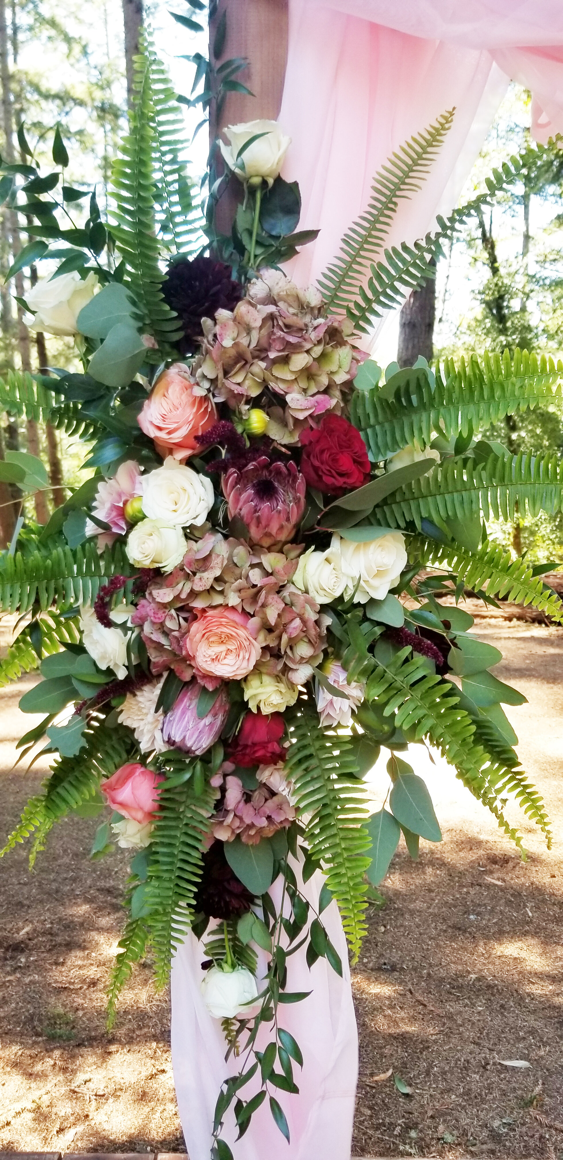 Wedding arch floral, lush fall colors in blush, mauve, deep burgundy and cream featuring ranunculus, protea, English roses, ruscus and fern.