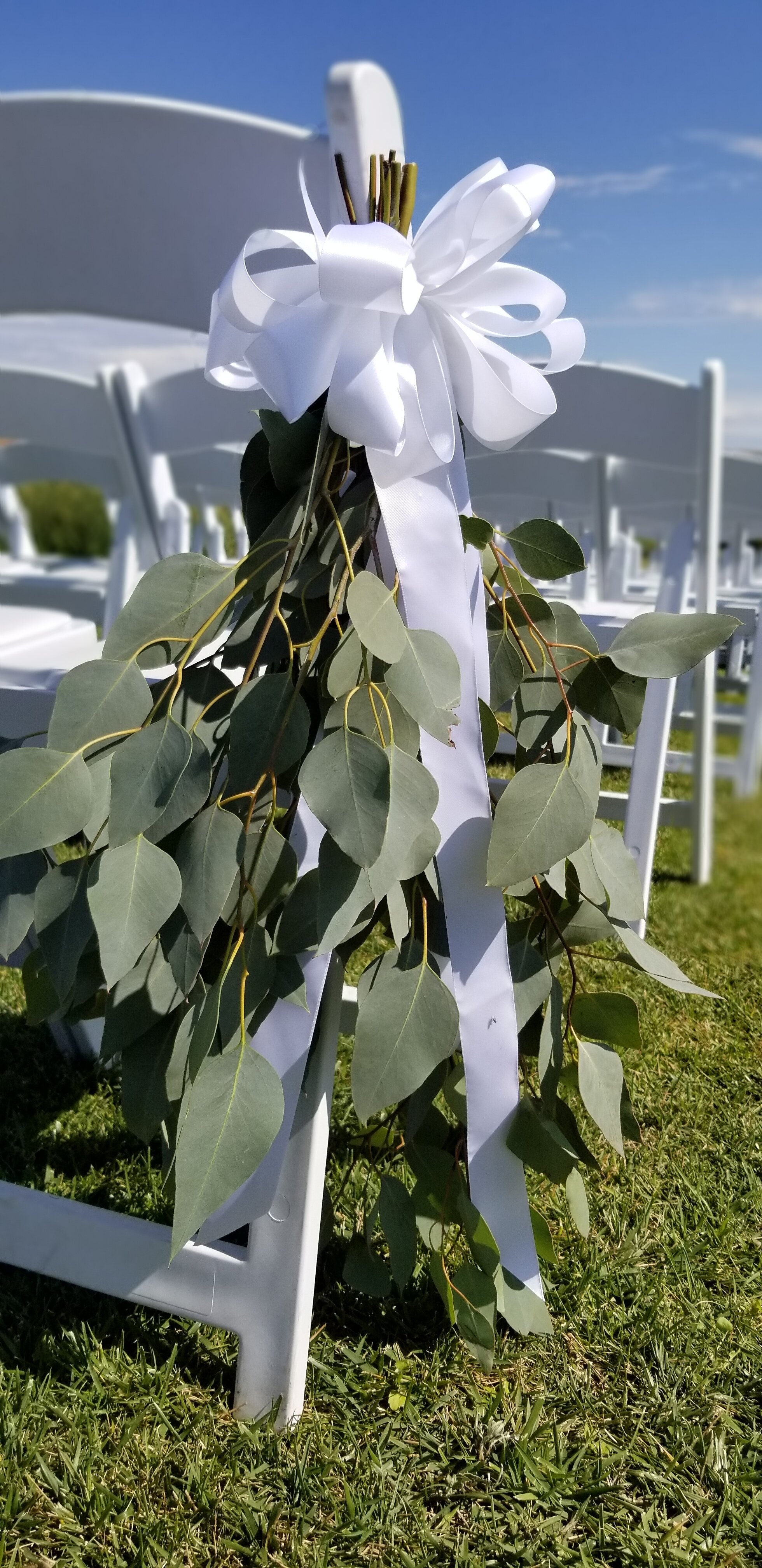 Aisle chair bouquets, gathering of fresh eucalyptus. Eagle Vines Golf Course, American Canyon