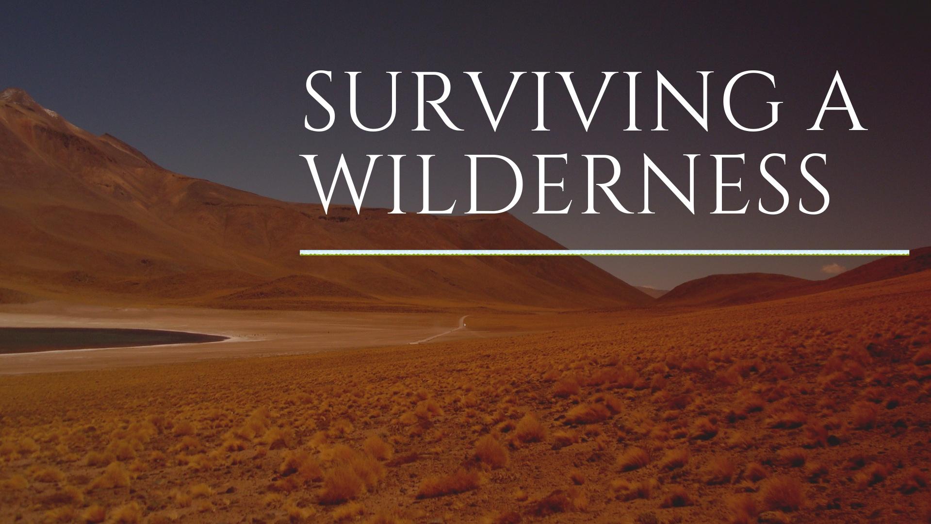 Surviving+a+Wilderness+%281%29.jpg