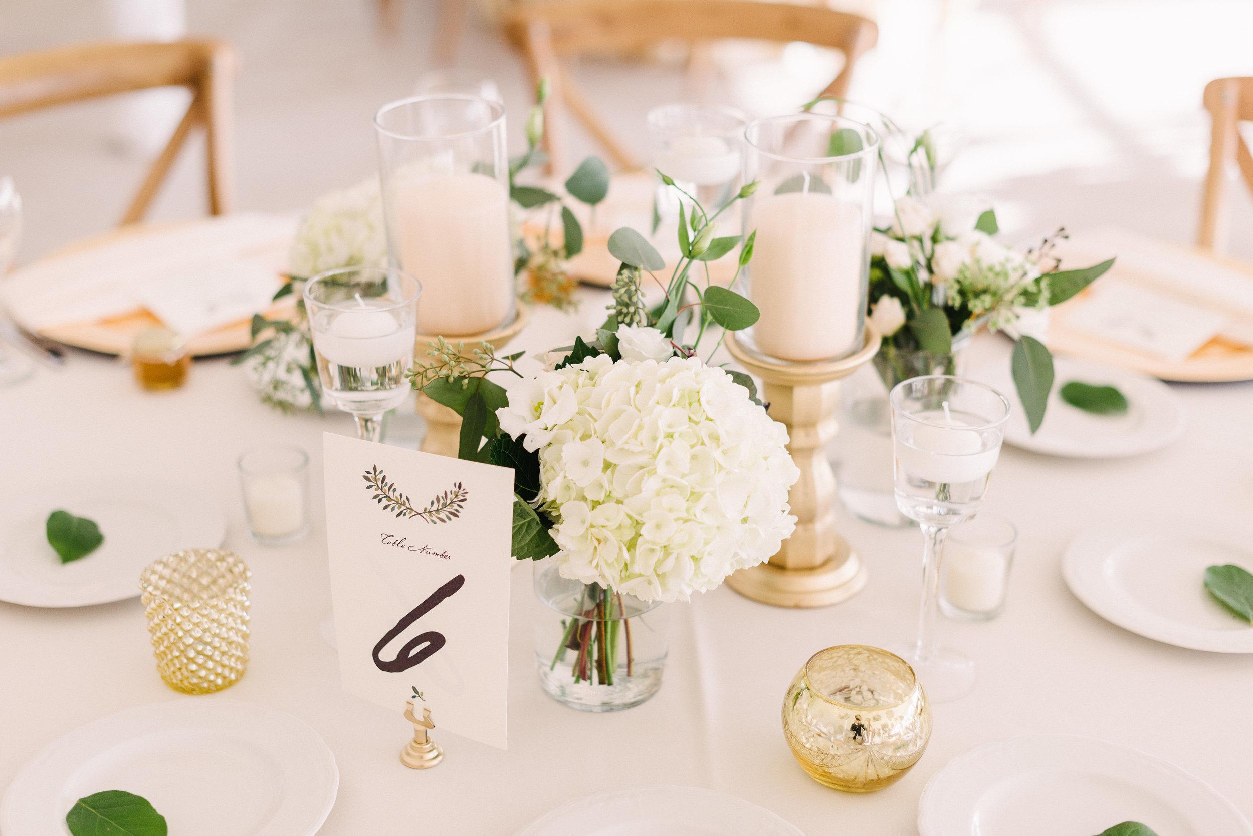 stephanie-cody-wedding_TSP-165827.jpg